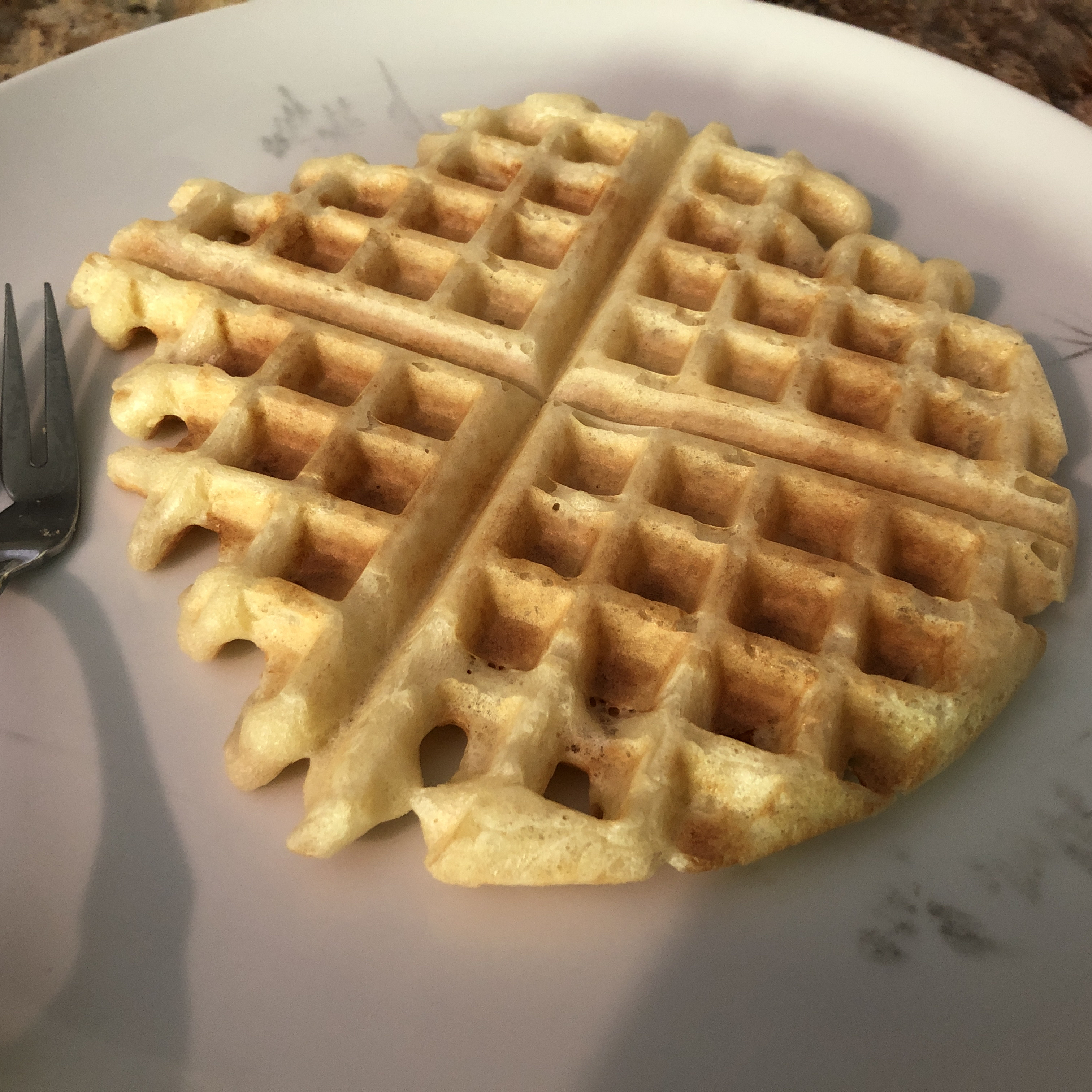 Yeast Waffles INVIS
