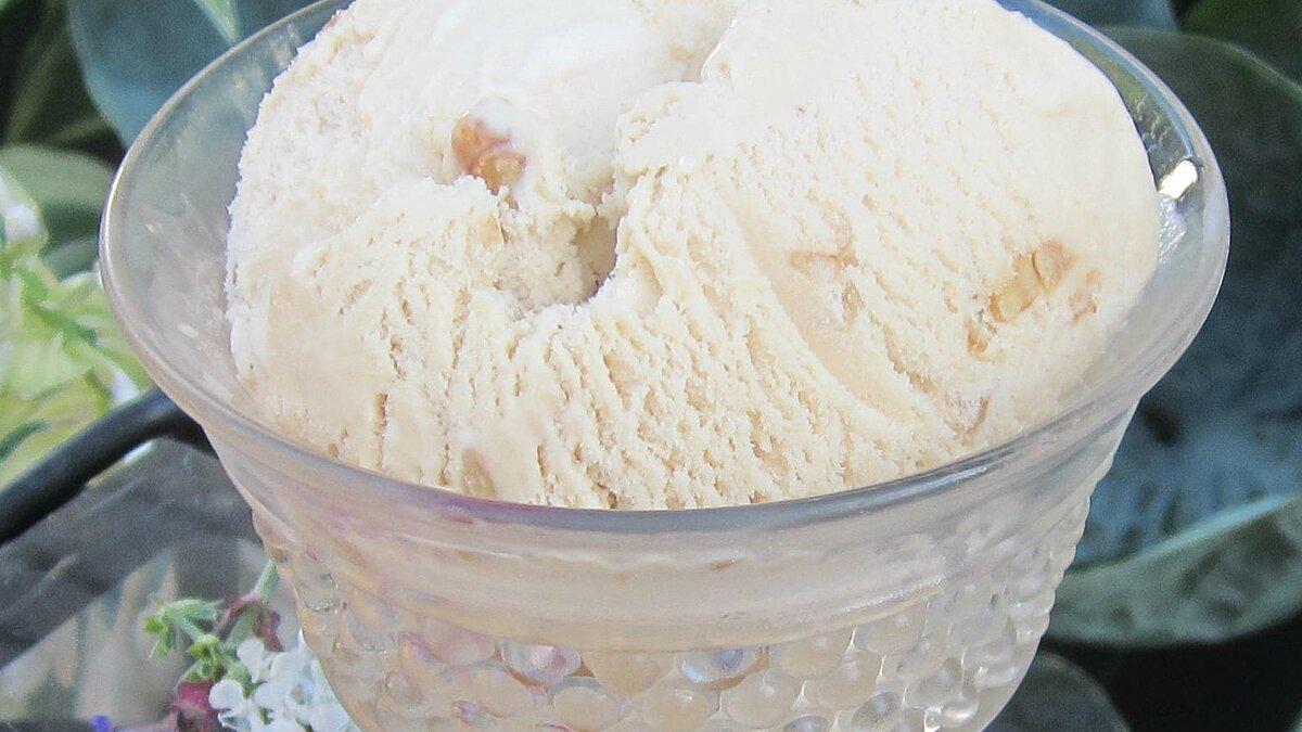 Maple Walnut Ice Cream Deb C
