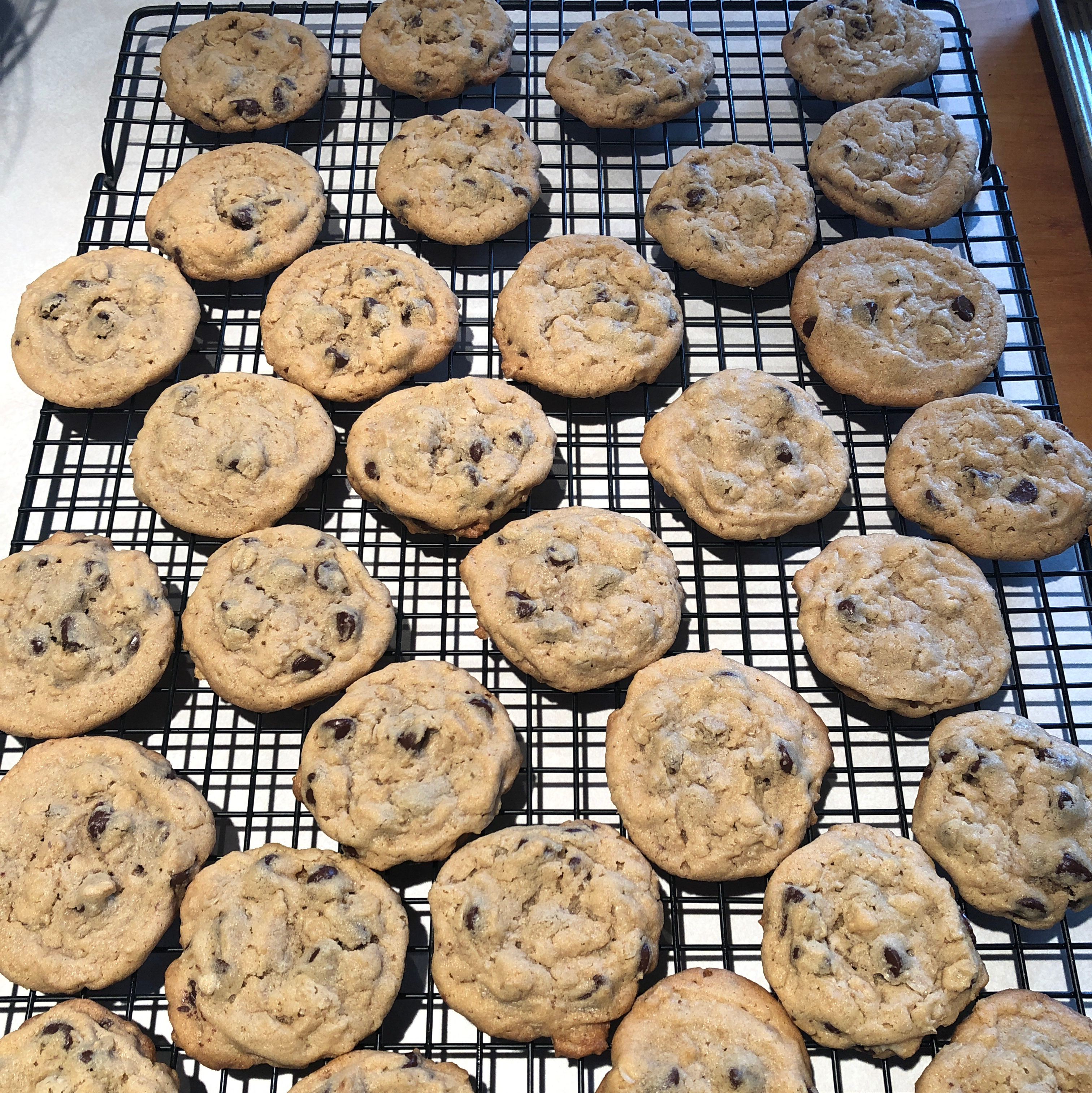 Outrageous Chocolate Chip Cookies nathogan
