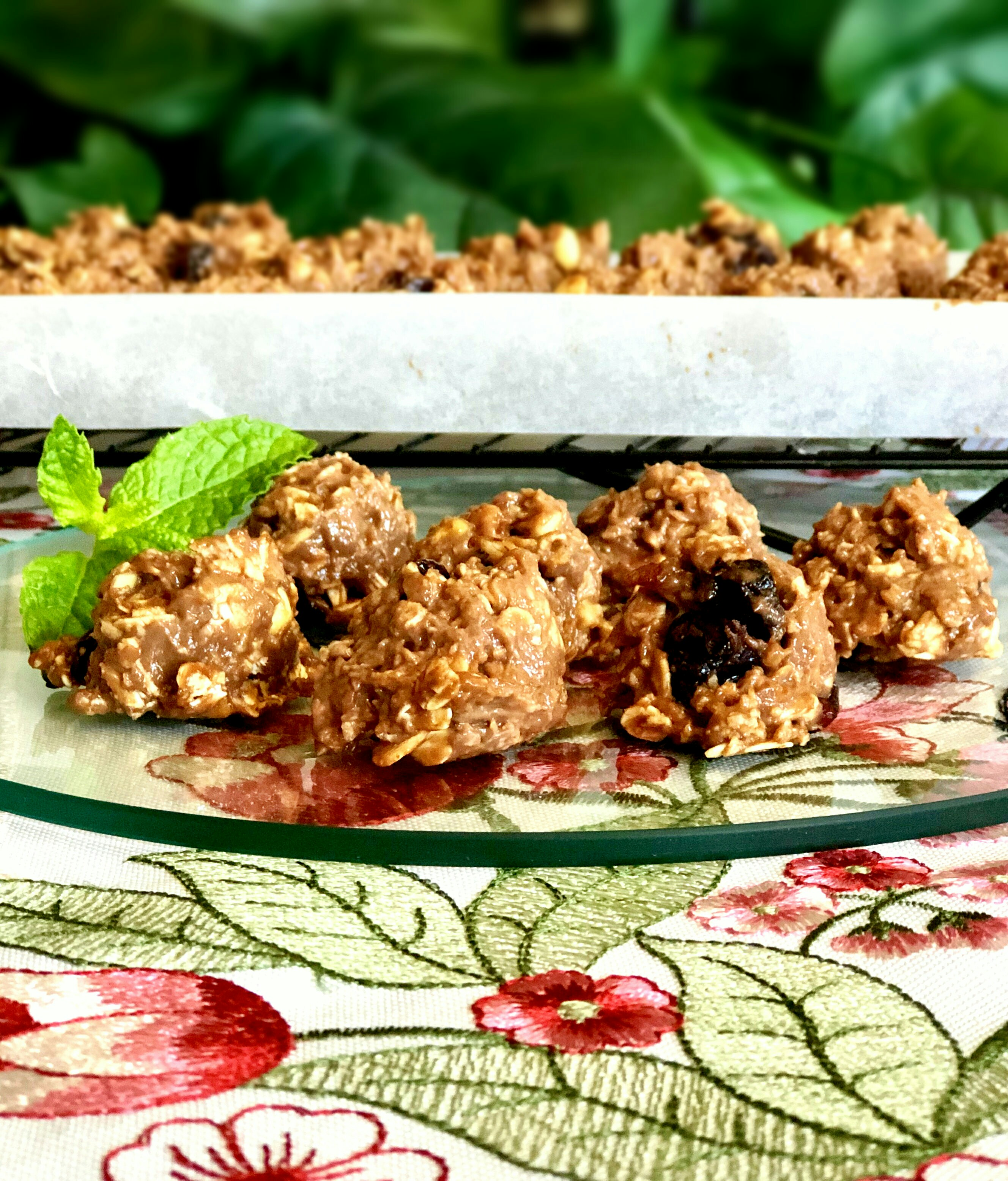 High-Protein Snack Bars