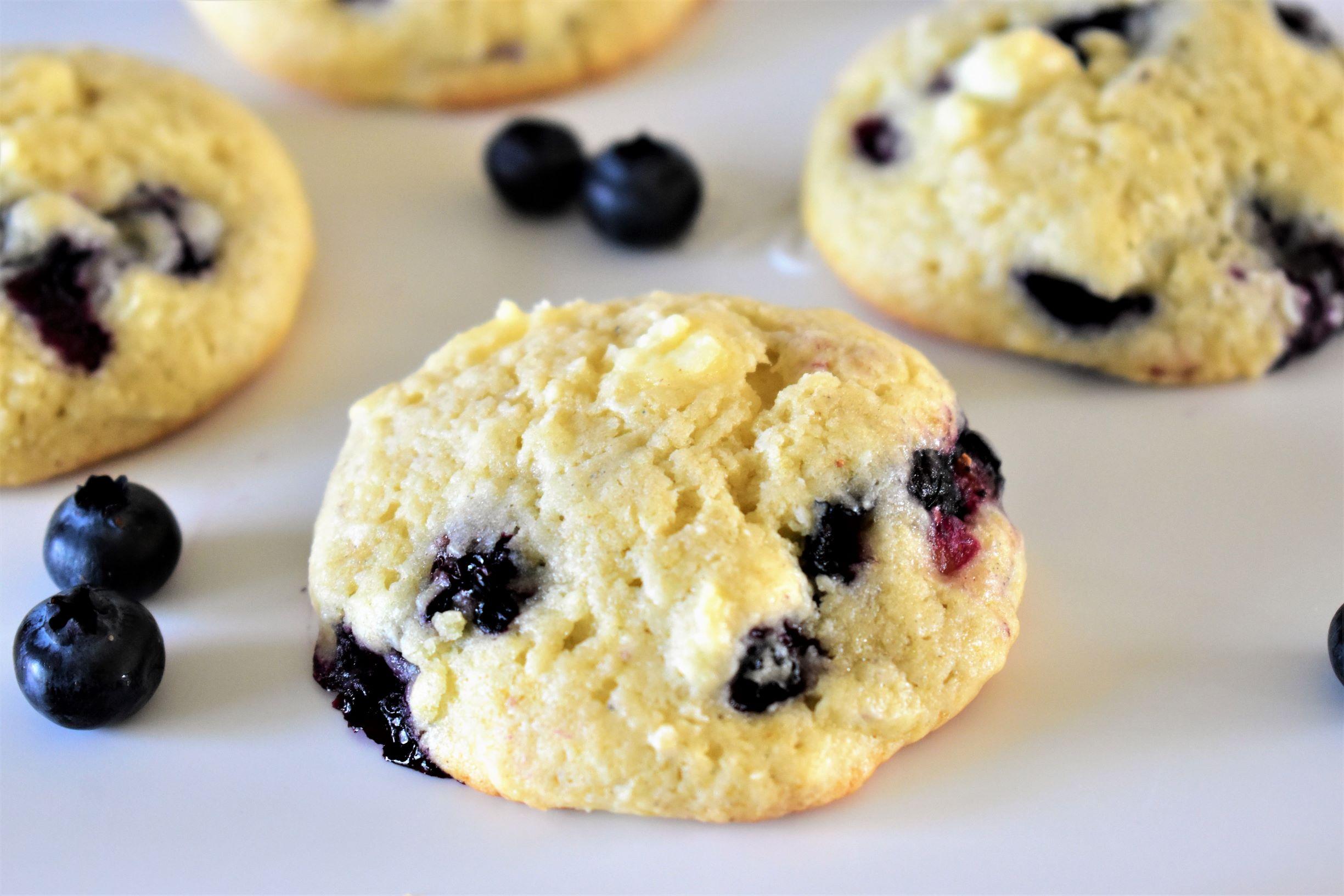 Blueberry Oatmeal Cookies Recipe Allrecipes