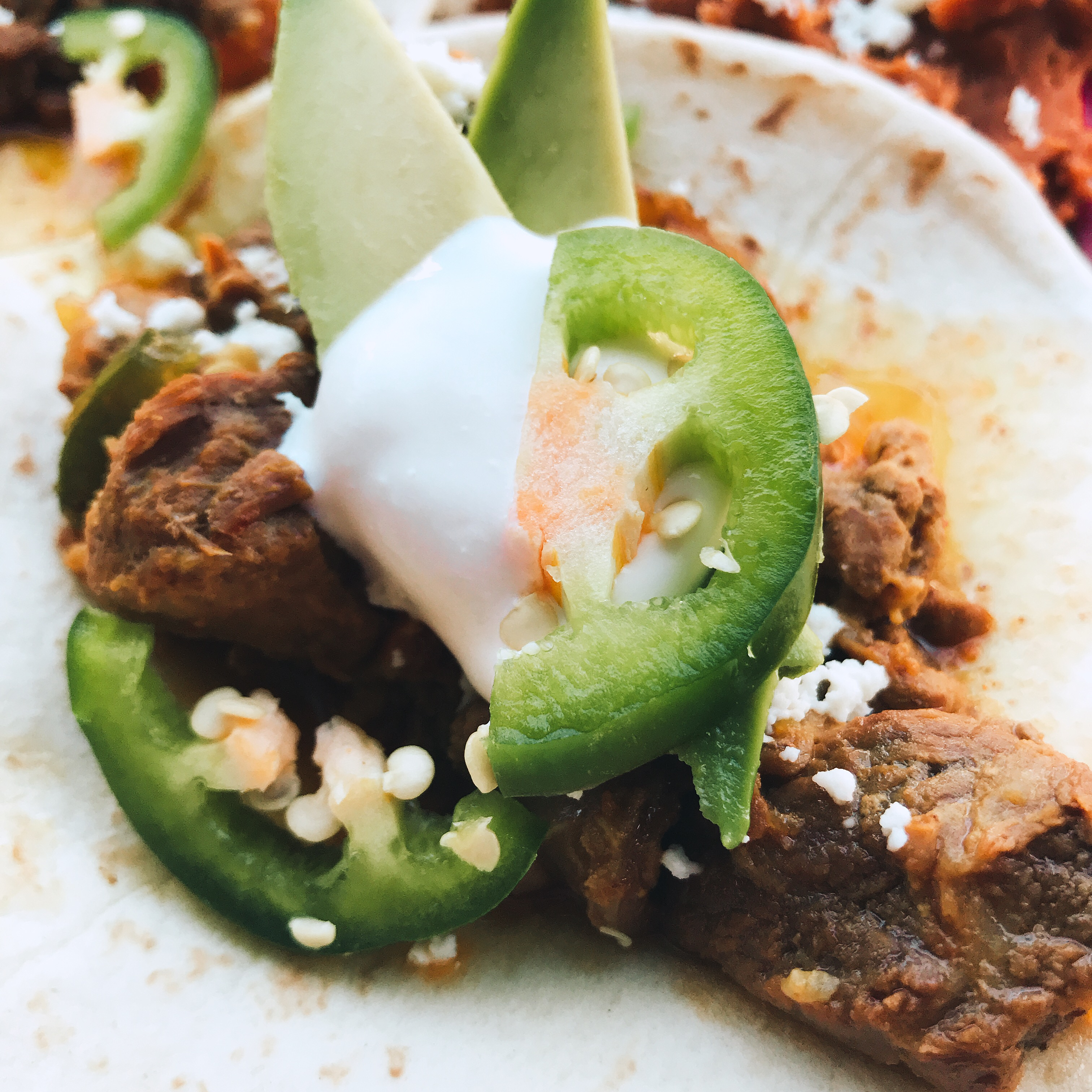 Instant Pot® Mexican Beef Taco Filling thedailygourmet