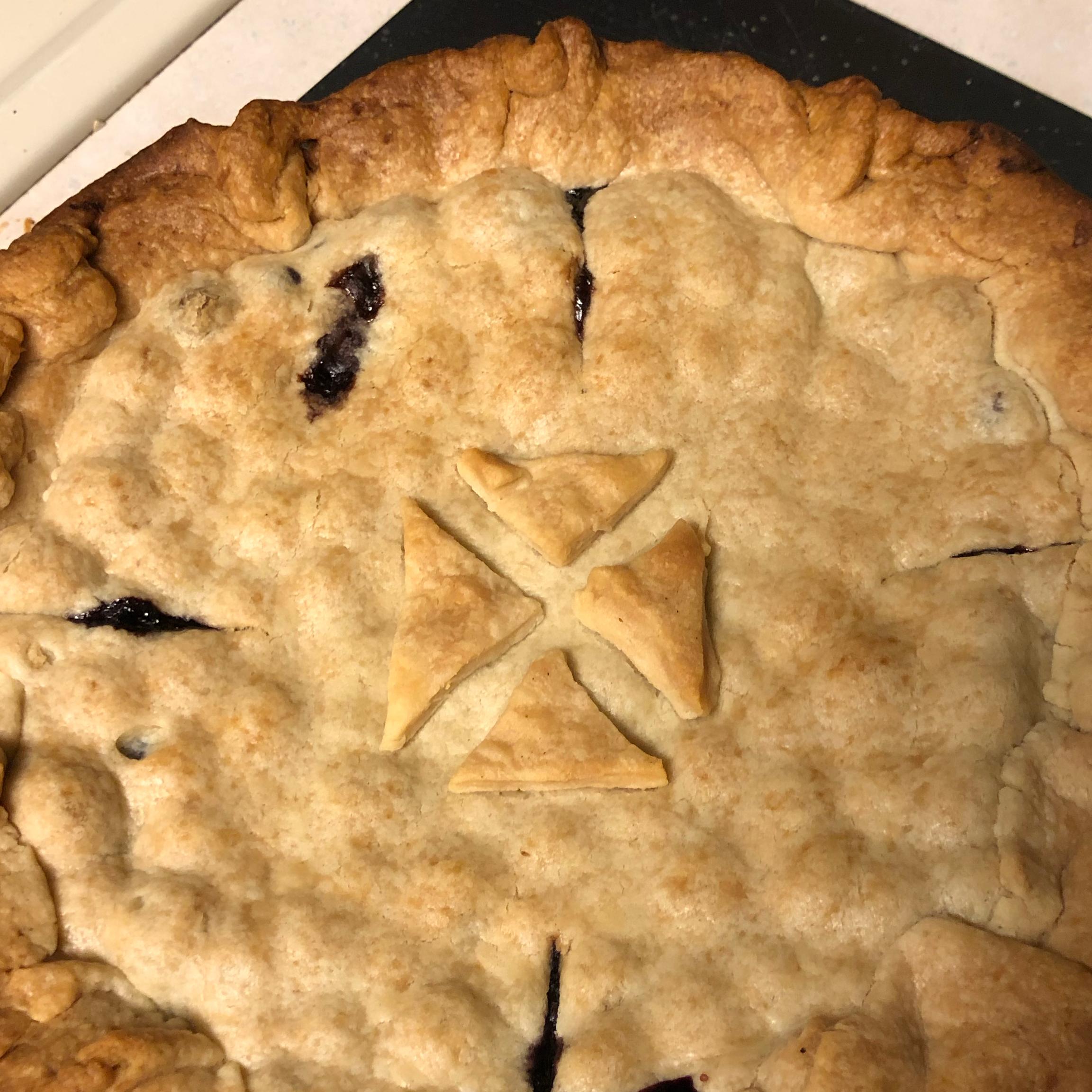 Fresh Blueberry Pie II Barb Payne