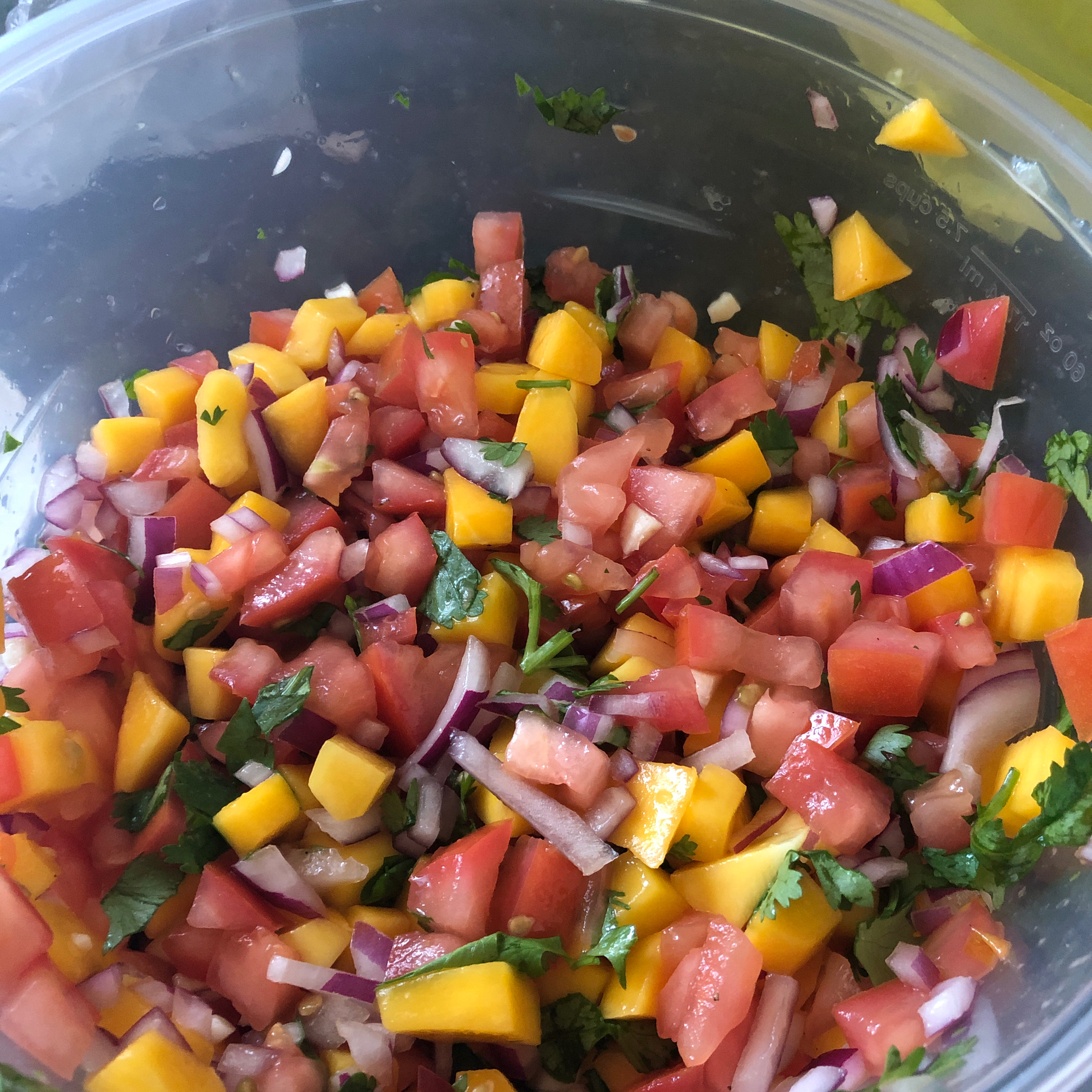 DSF's Fresh Mango Salsa DrSeussFreak