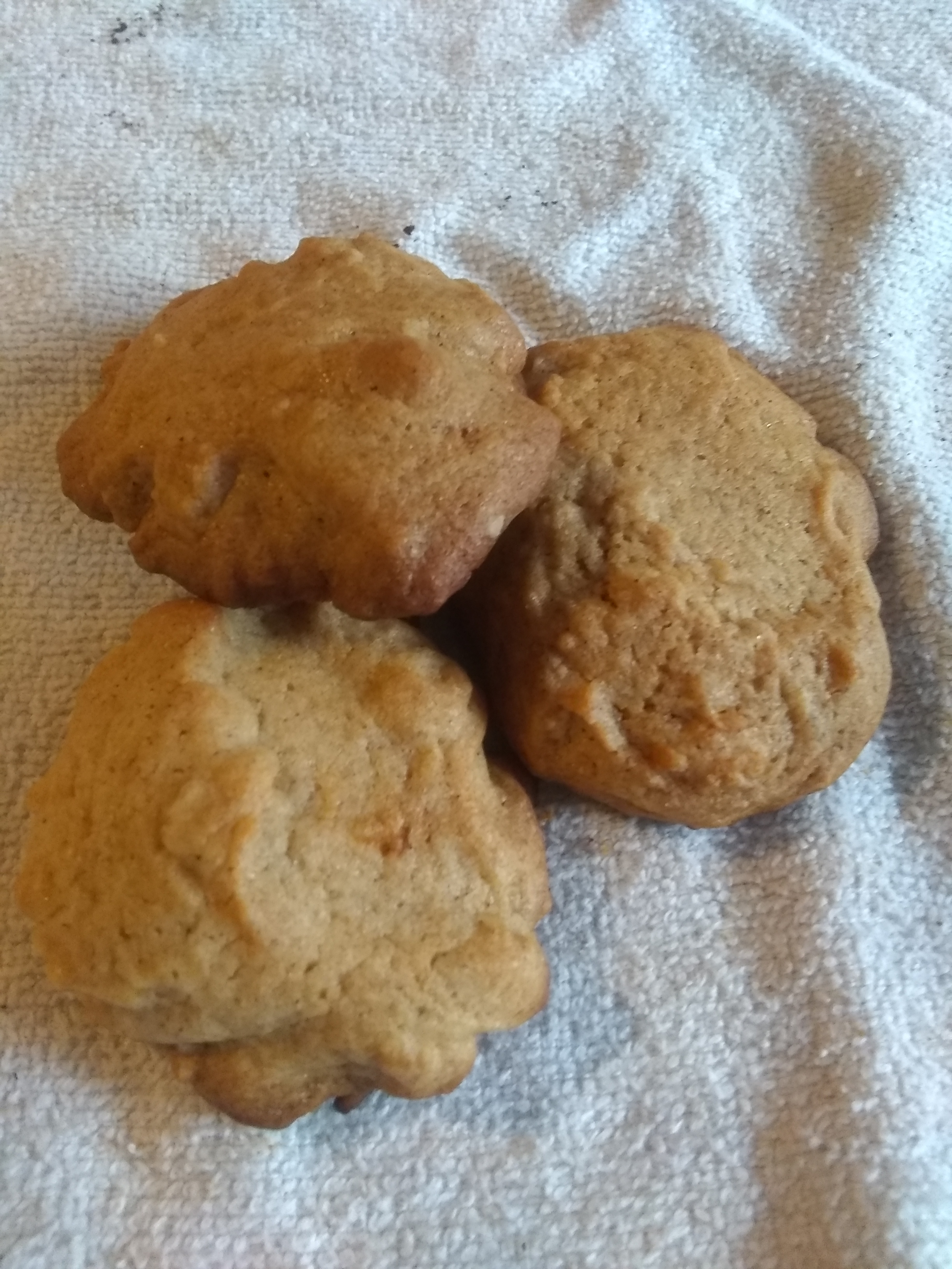 Honeybee Cookies mypuppylikessprinkles