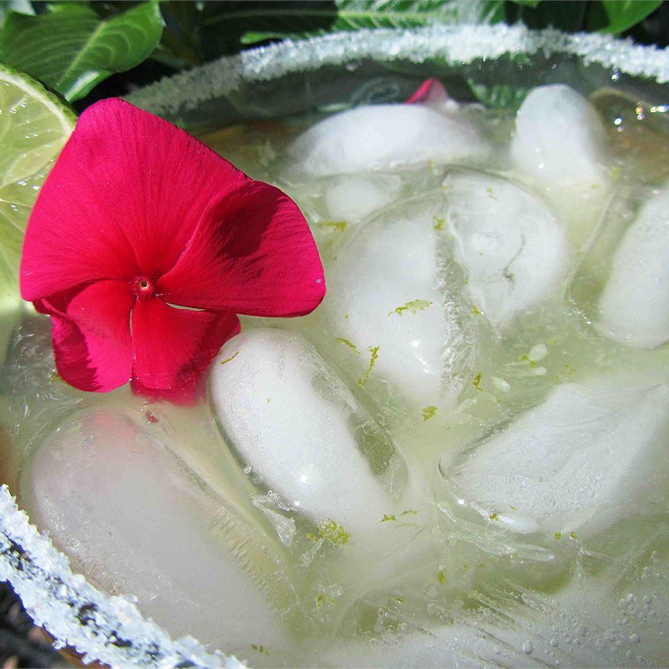 Margaritas to Die For Linda