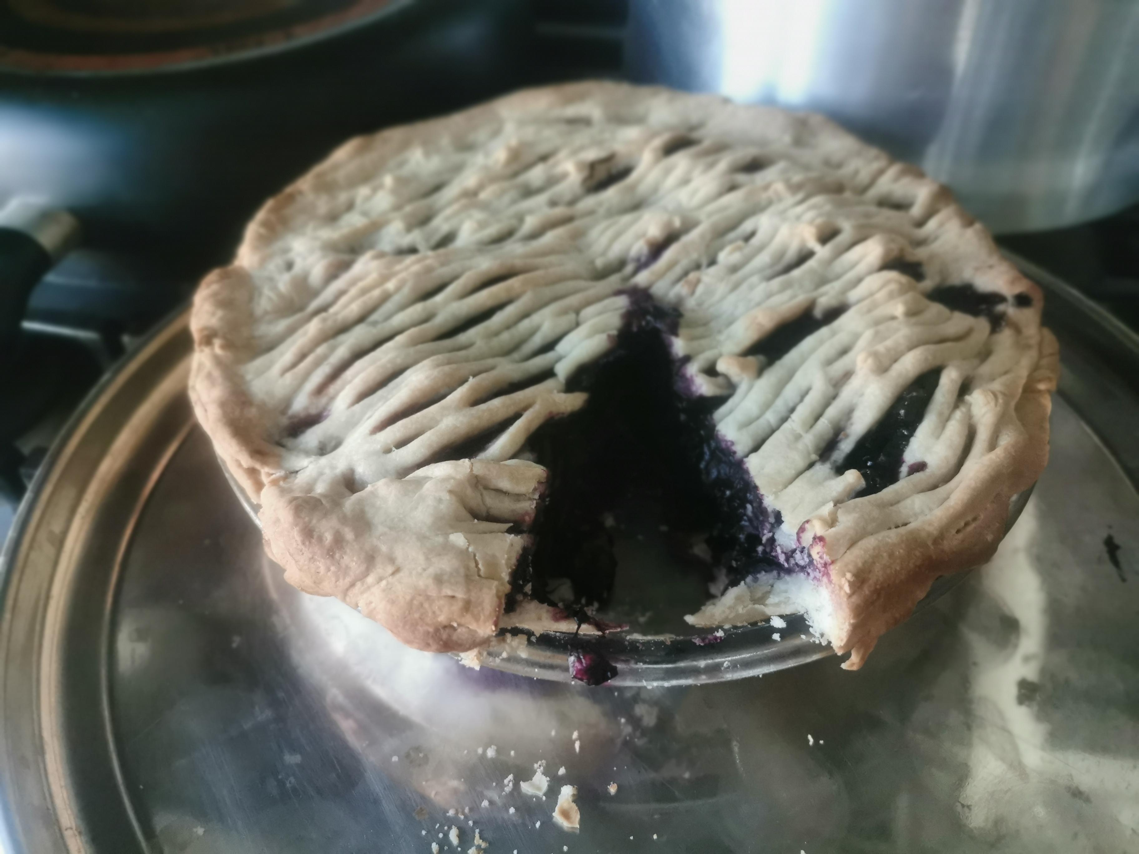 Concord Grape Pie I