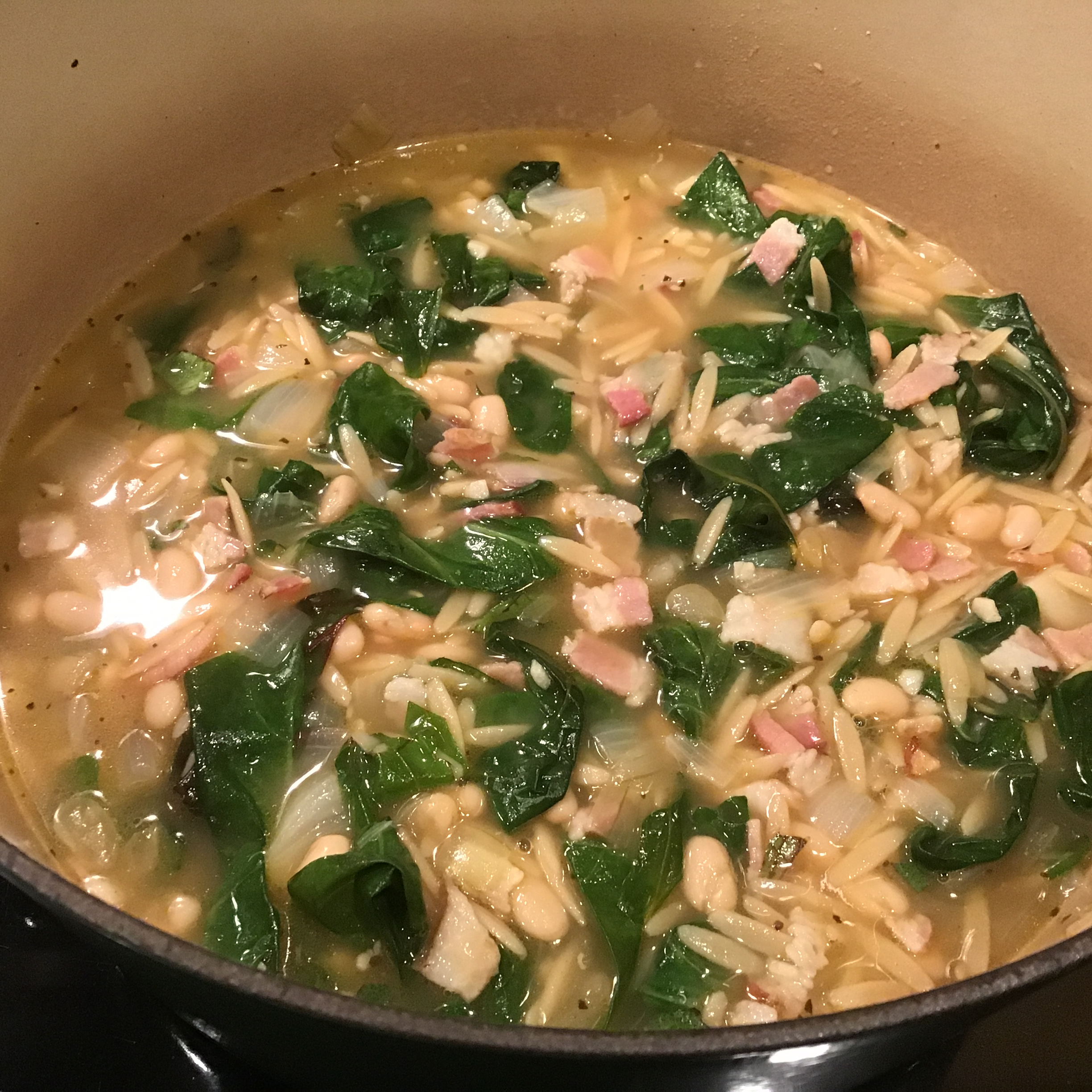 Tuscan Chard and Cannellini Bean Soup