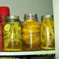 Crisp Pickled Green Beans RNJ1999