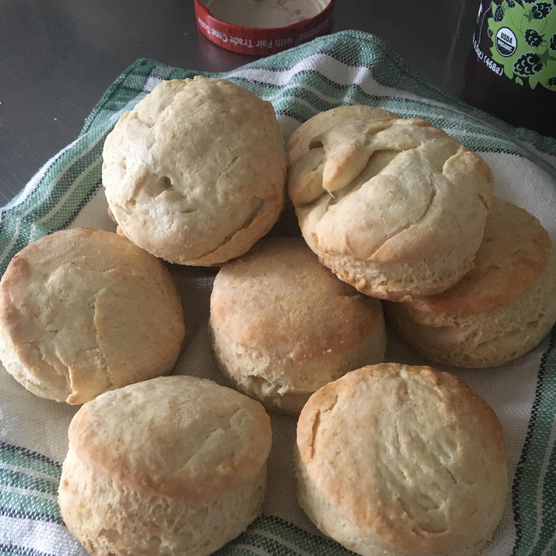 Super Quick Biscuit Squares