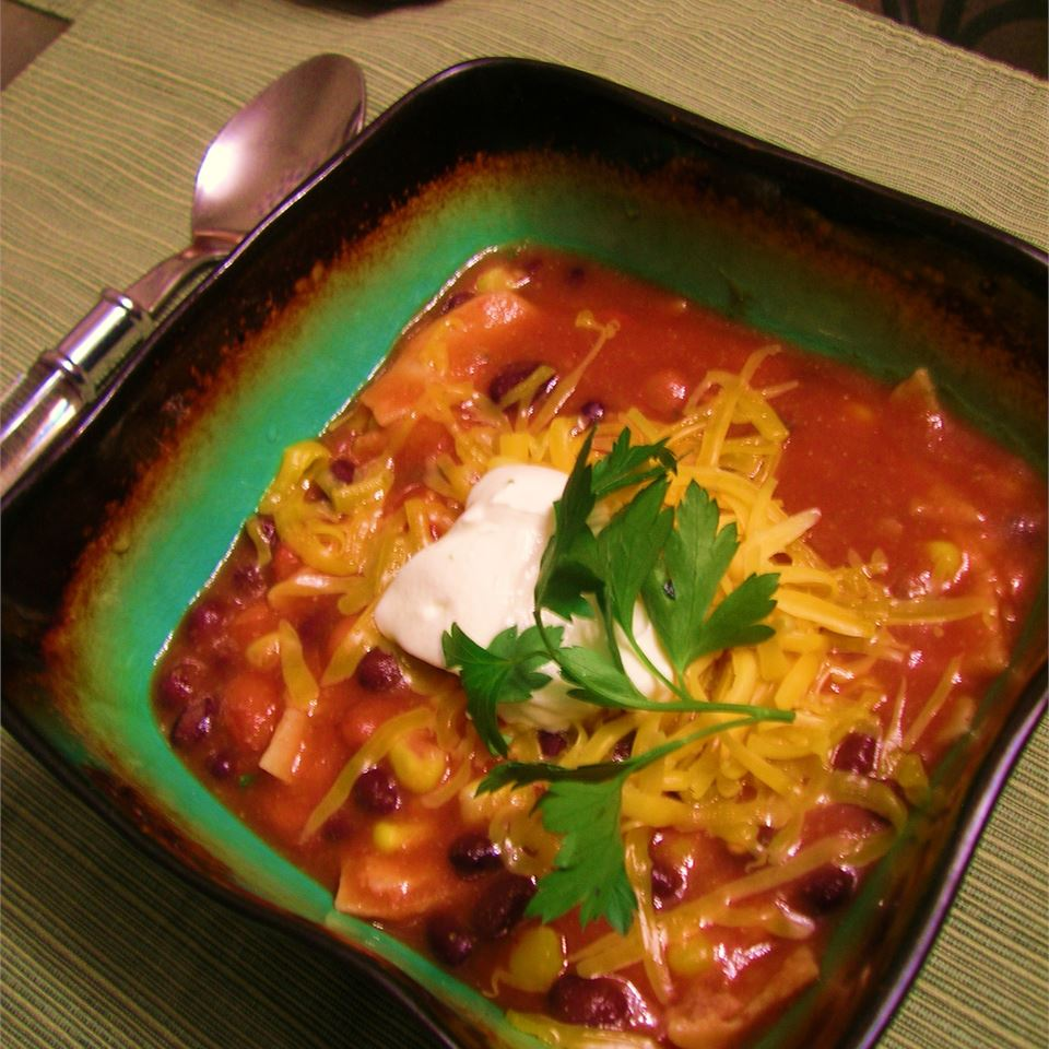 Vegetarian Tortilla Stew