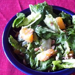 Orange Romaine Salad