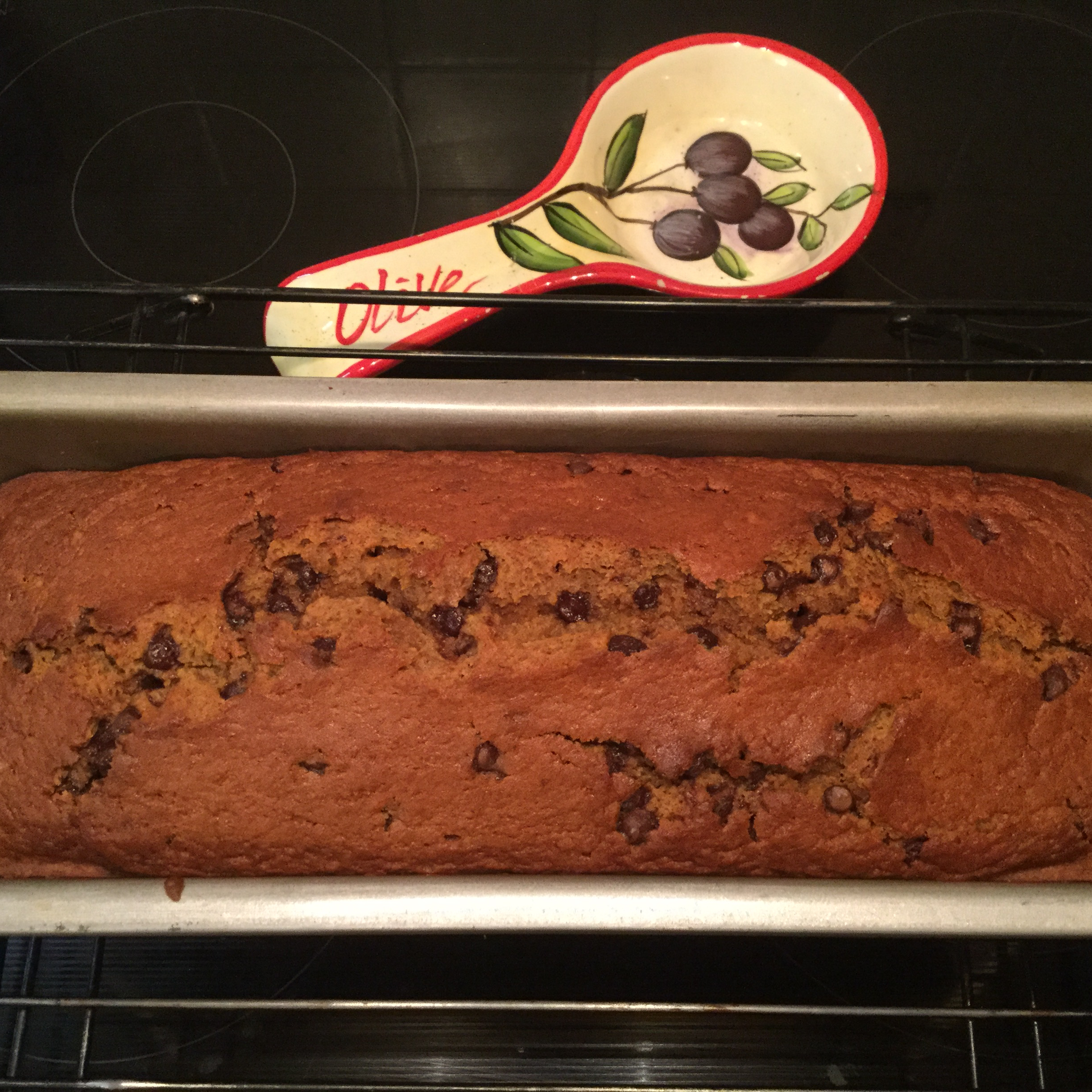 Easy Pumpkin Chocolate Chip Bread Whitney