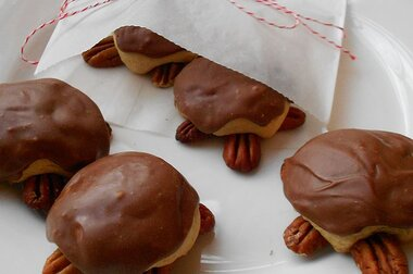 Snappy Turtle Cookies Recipe Allrecipes Com Allrecipes