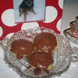 Snappy Turtle Cookies Deb C