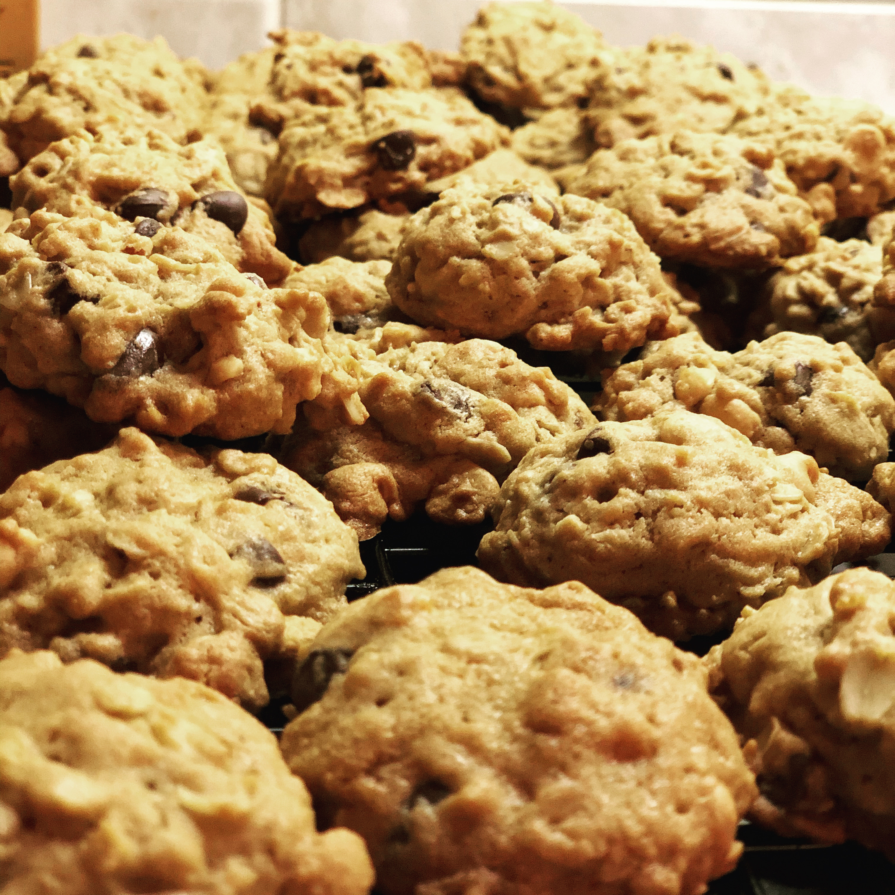 Oatmeal Peanut Butter and Chocolate Chip Cookies Danielle
