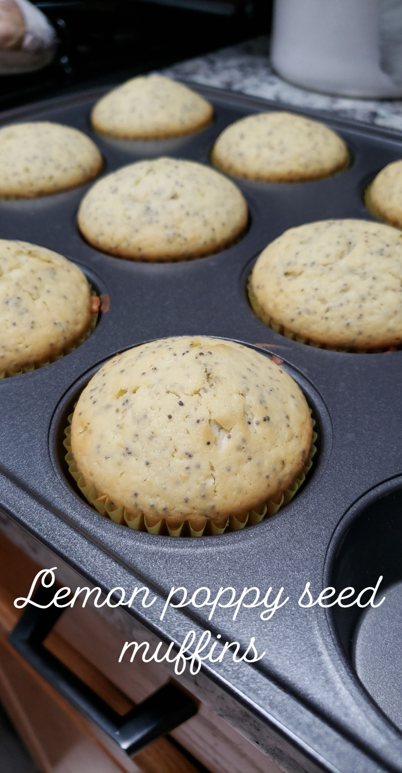 Quick Lemon Poppy Seed Muffins ArmyRD