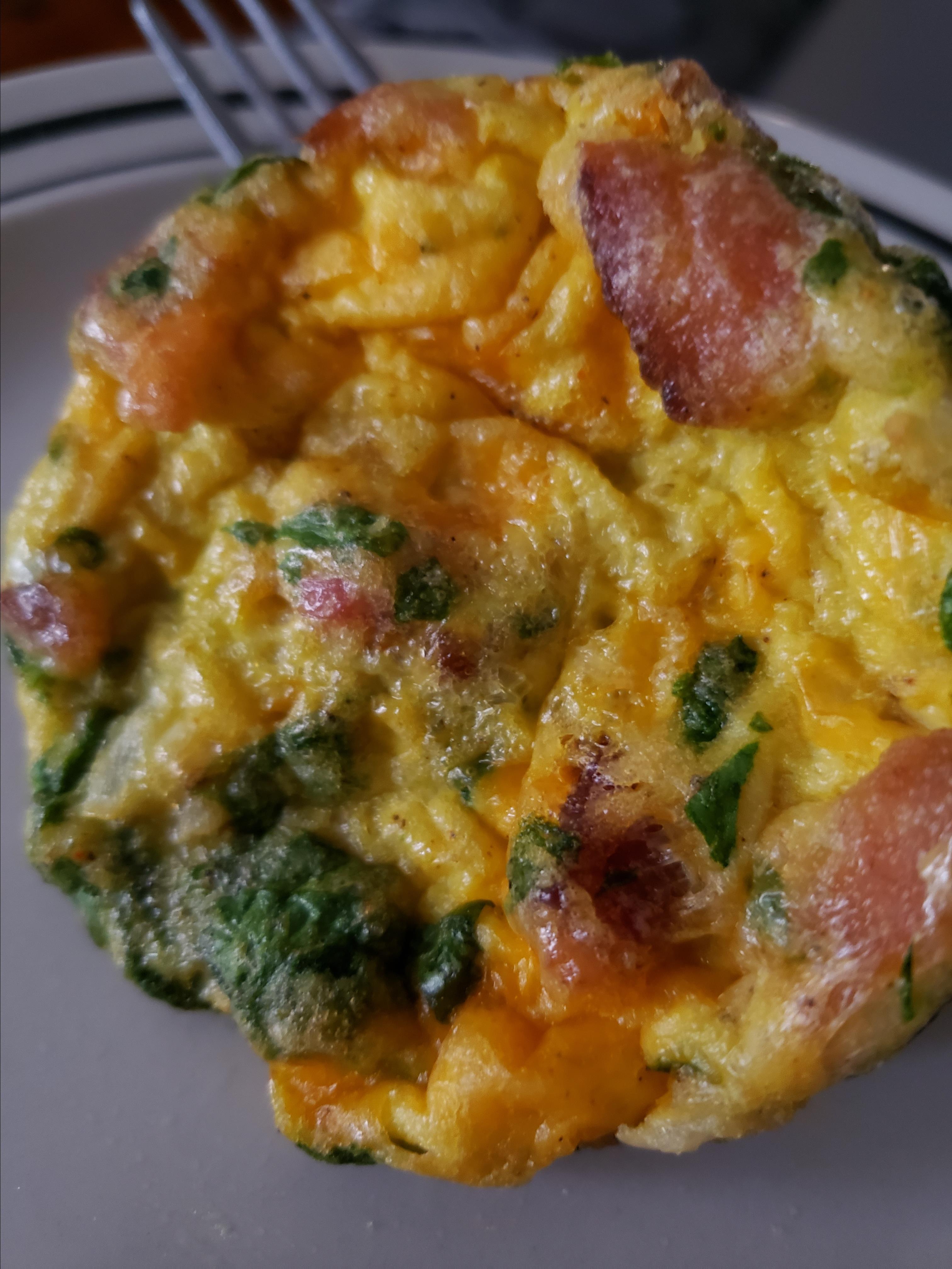 Egg Bites Melissa Ciers