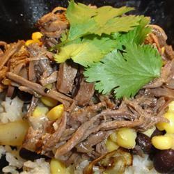 Kris' Amazing Shredded Mexican Beef Carol Castellucci Miller