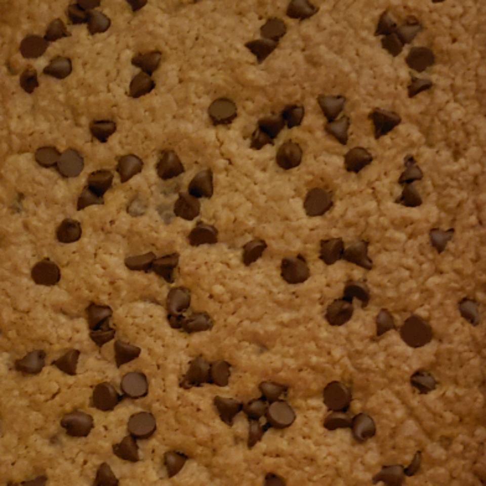 Bake Sale Chocolate Chip Oatmeal Brownies