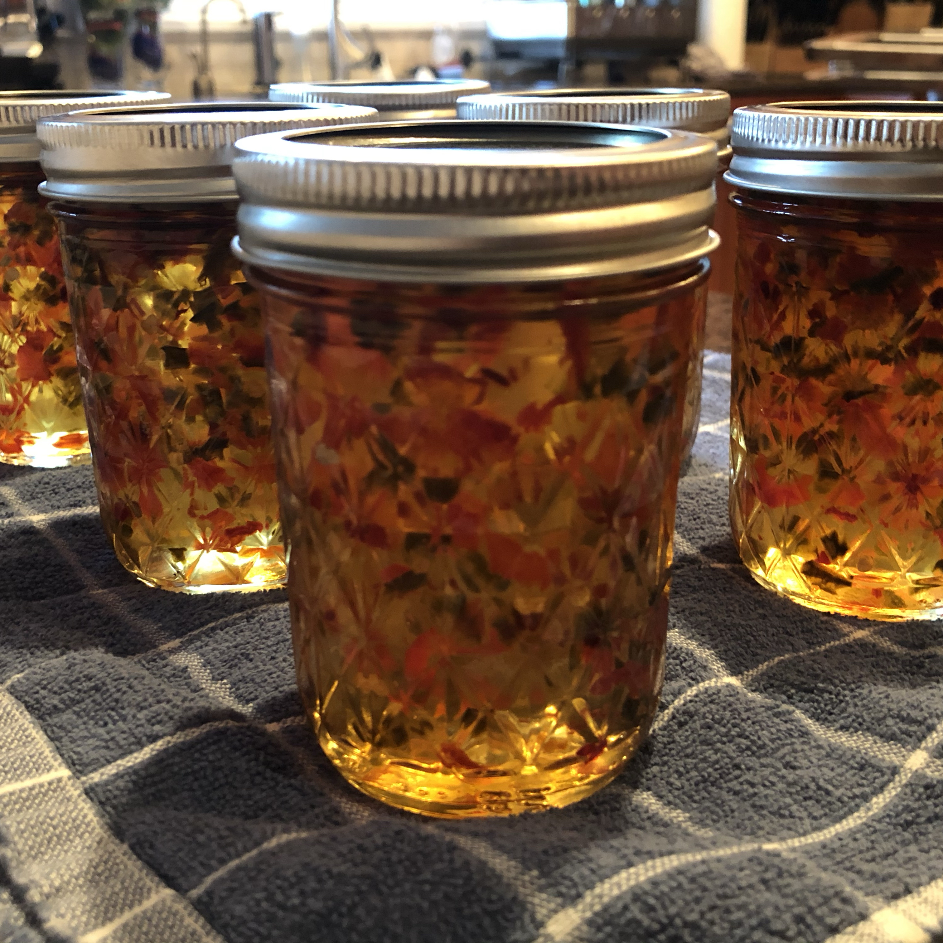 Red and Green Christmas Jalapeno Jelly Windsleigher