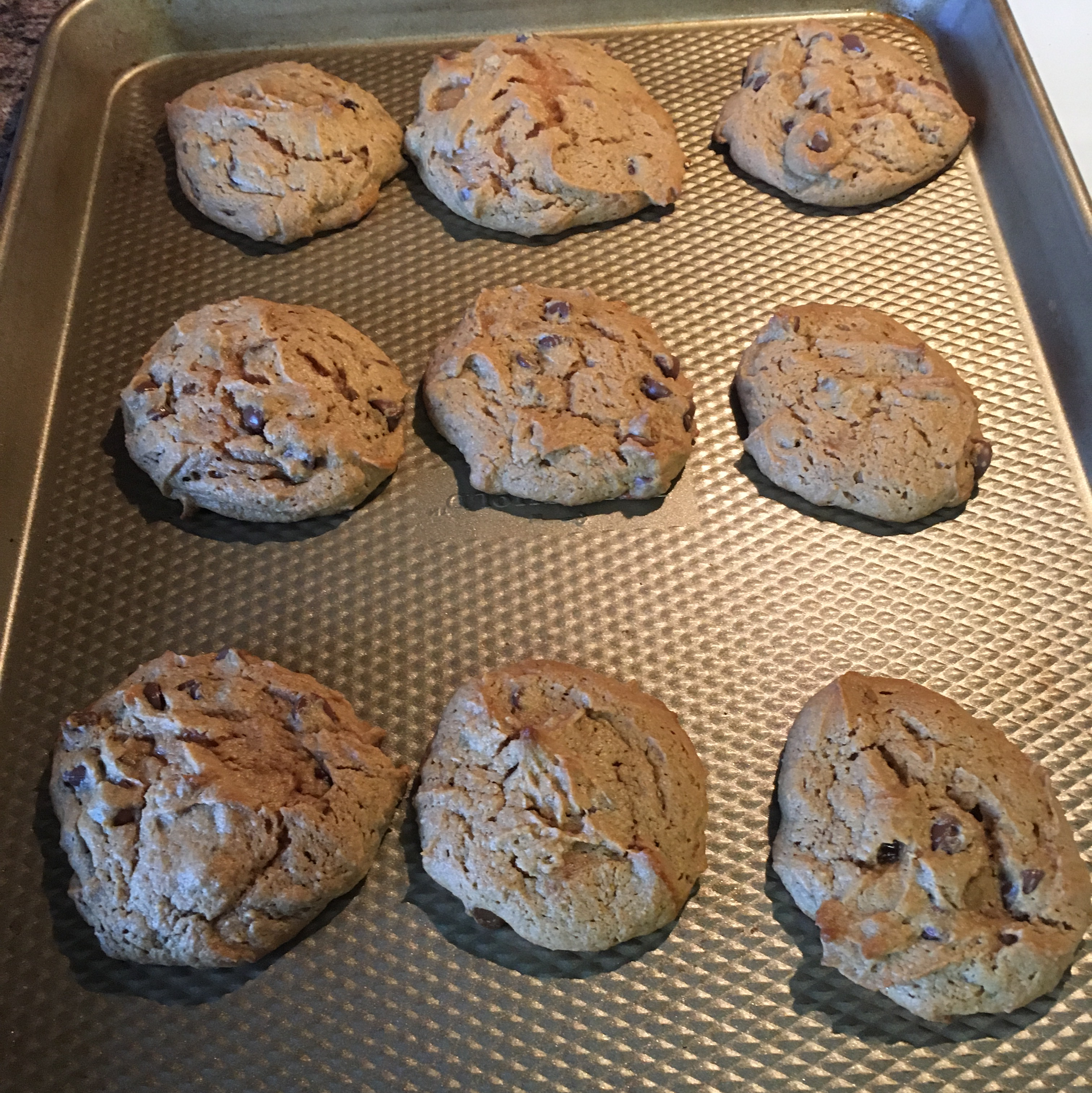 Daddy Cookies (Gluten- and Grain-Free Peanut Butter and Chocolate Chip Cookies) Christina Depue