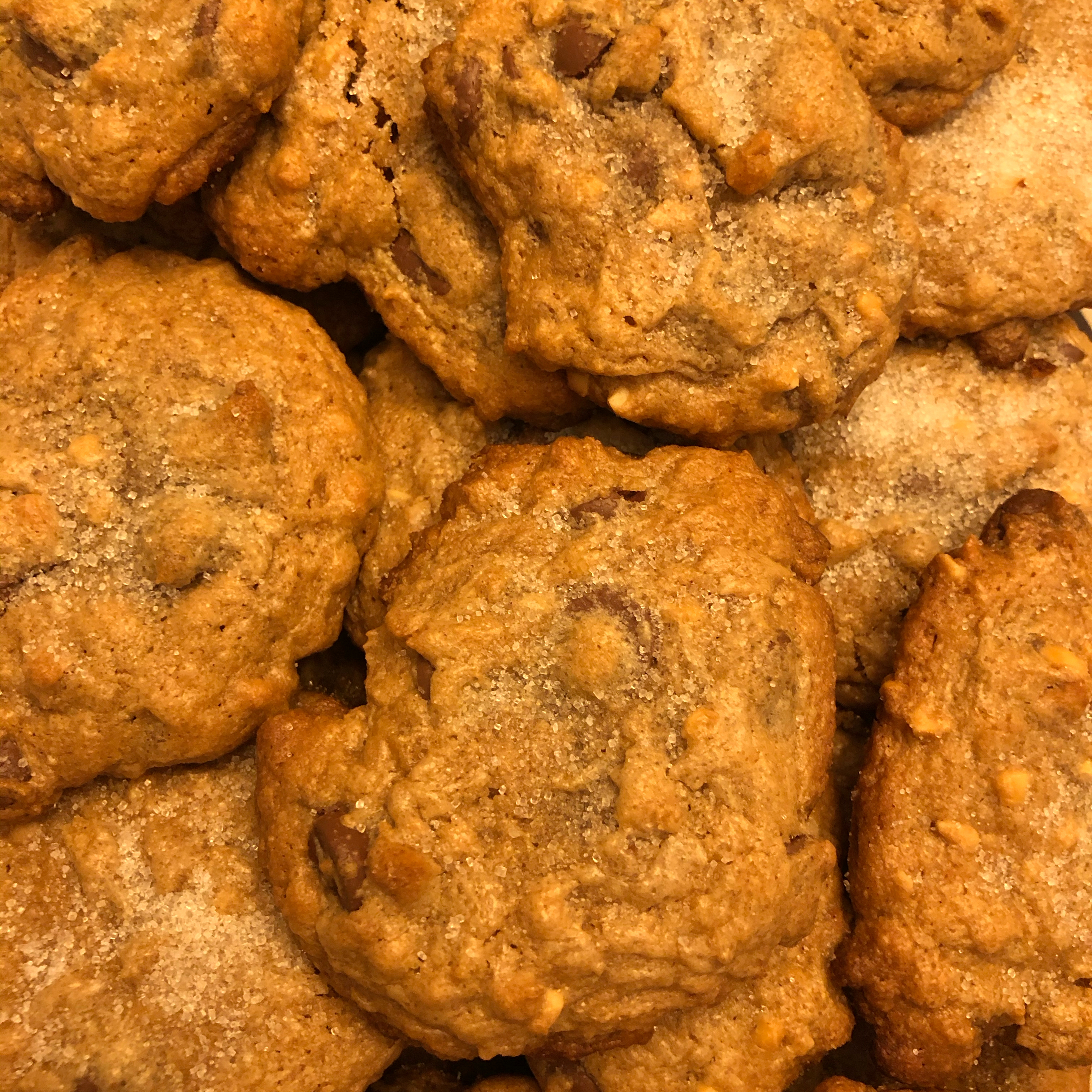 Peanut Butter Choco Chip Cookies Christine Luscombe