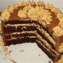 Buttermilk Chocolate Cake with Fudge Icing imtassiethatsme