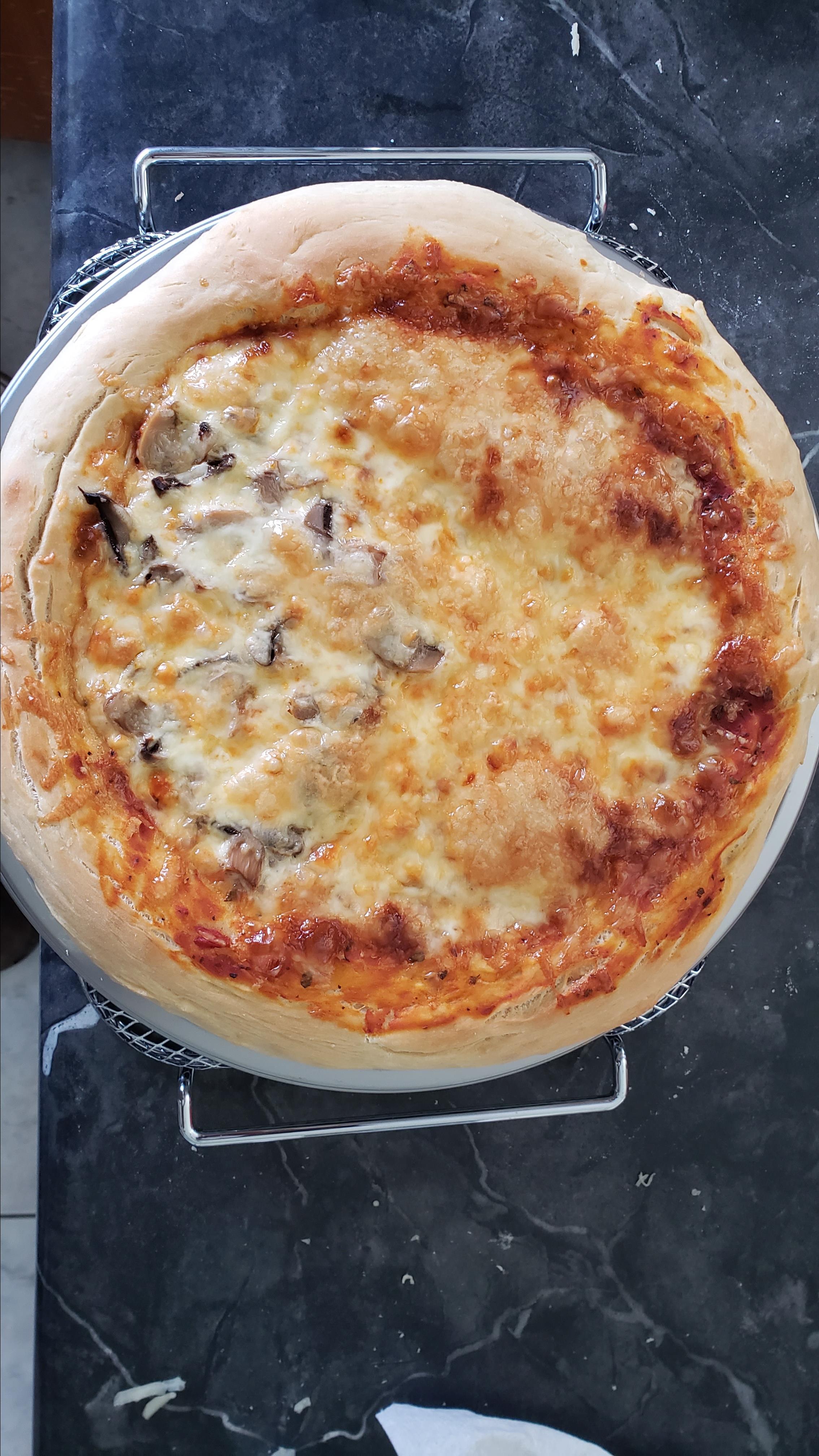 Pizza Dough III Mr Lion