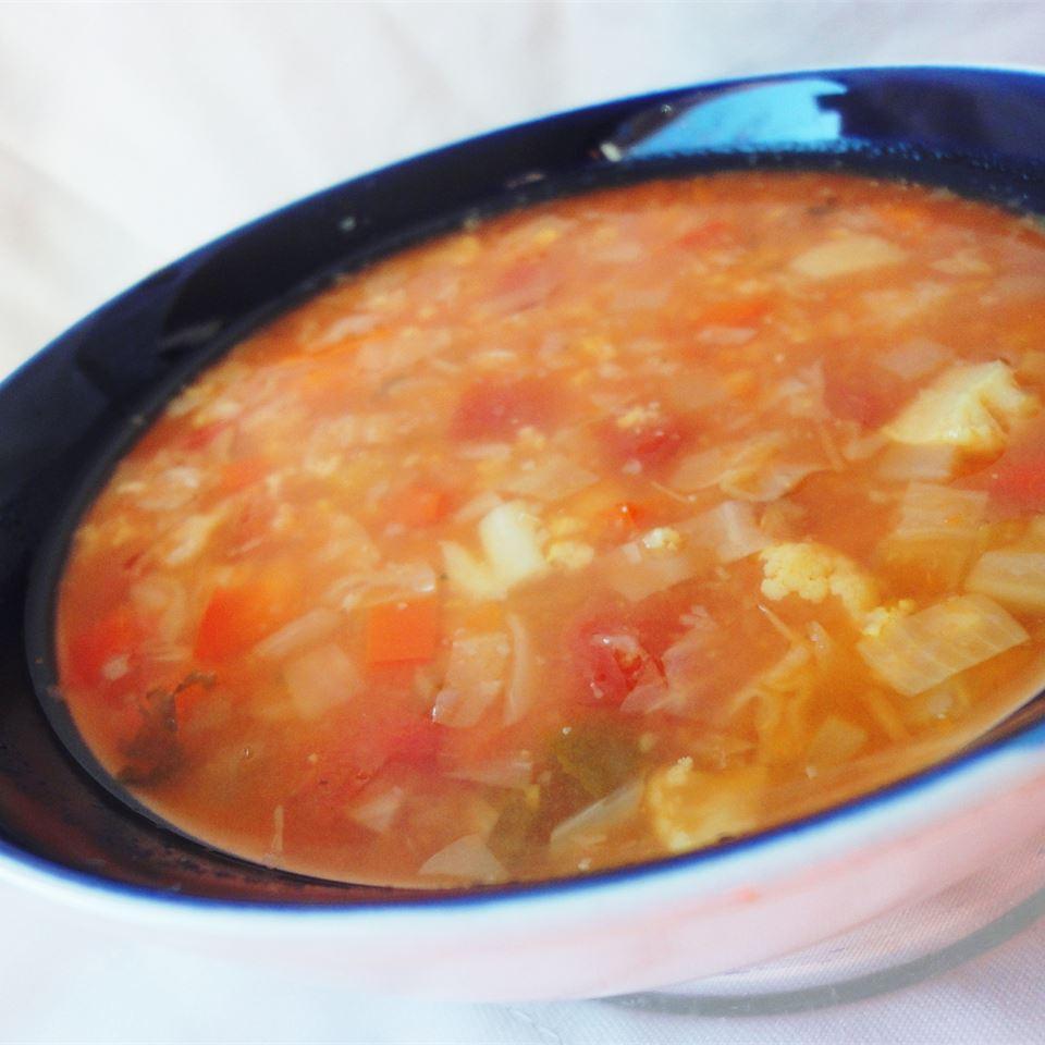 Fat-Free Vegetable Soup larkspur