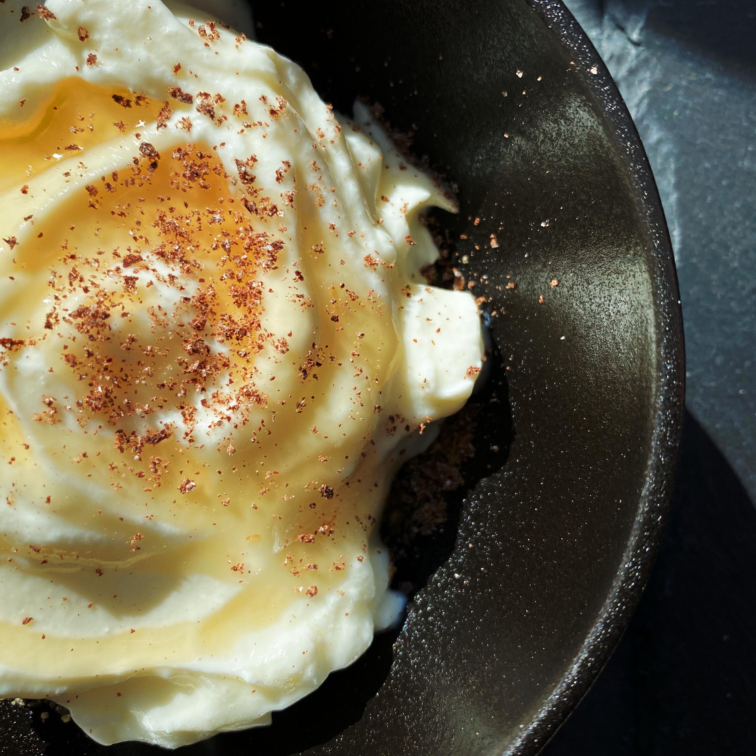 Easy Homemade Yogurt ParsiCook
