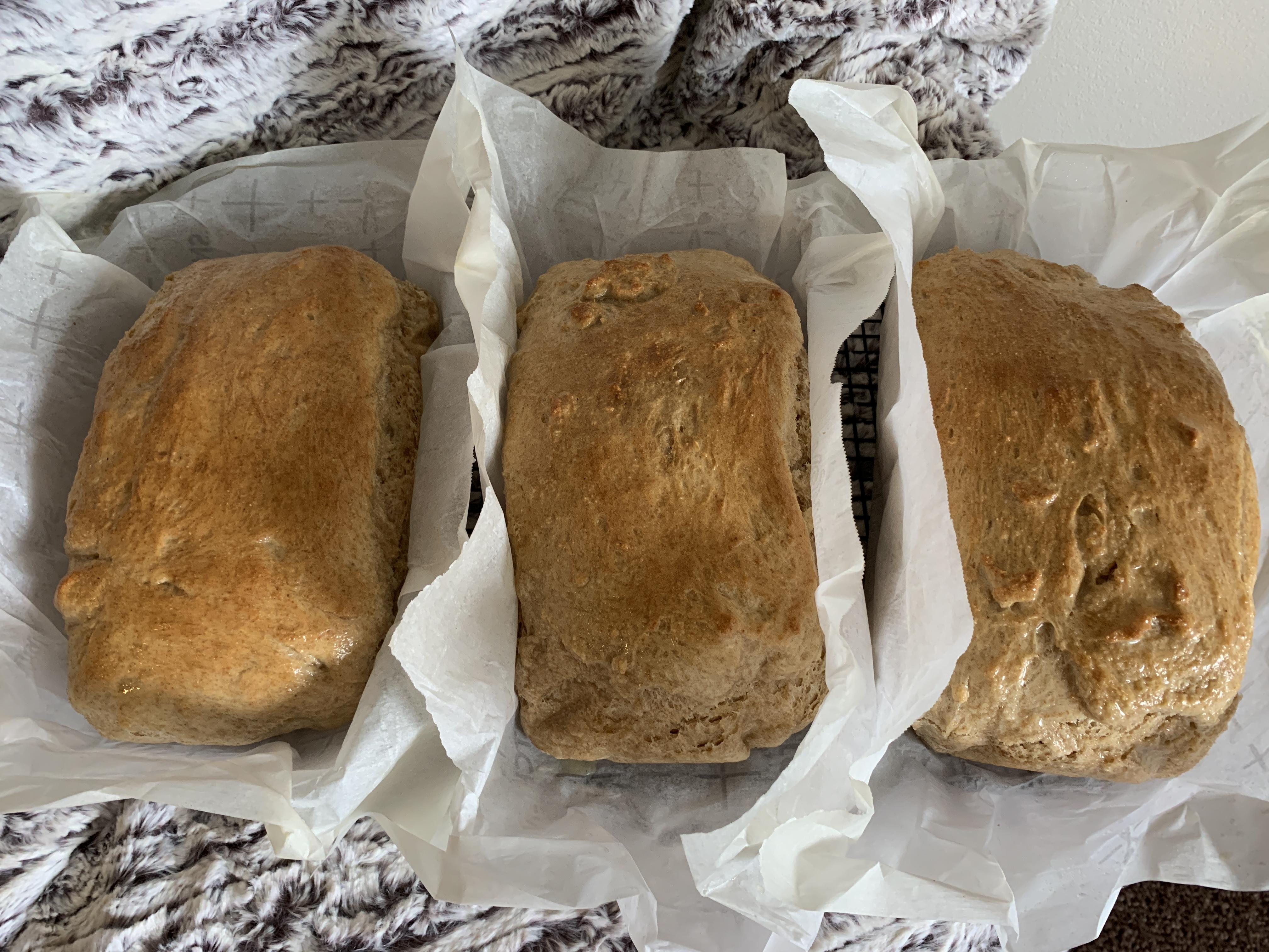Easy 100% Whole Wheat Bread janapyle@msn.com