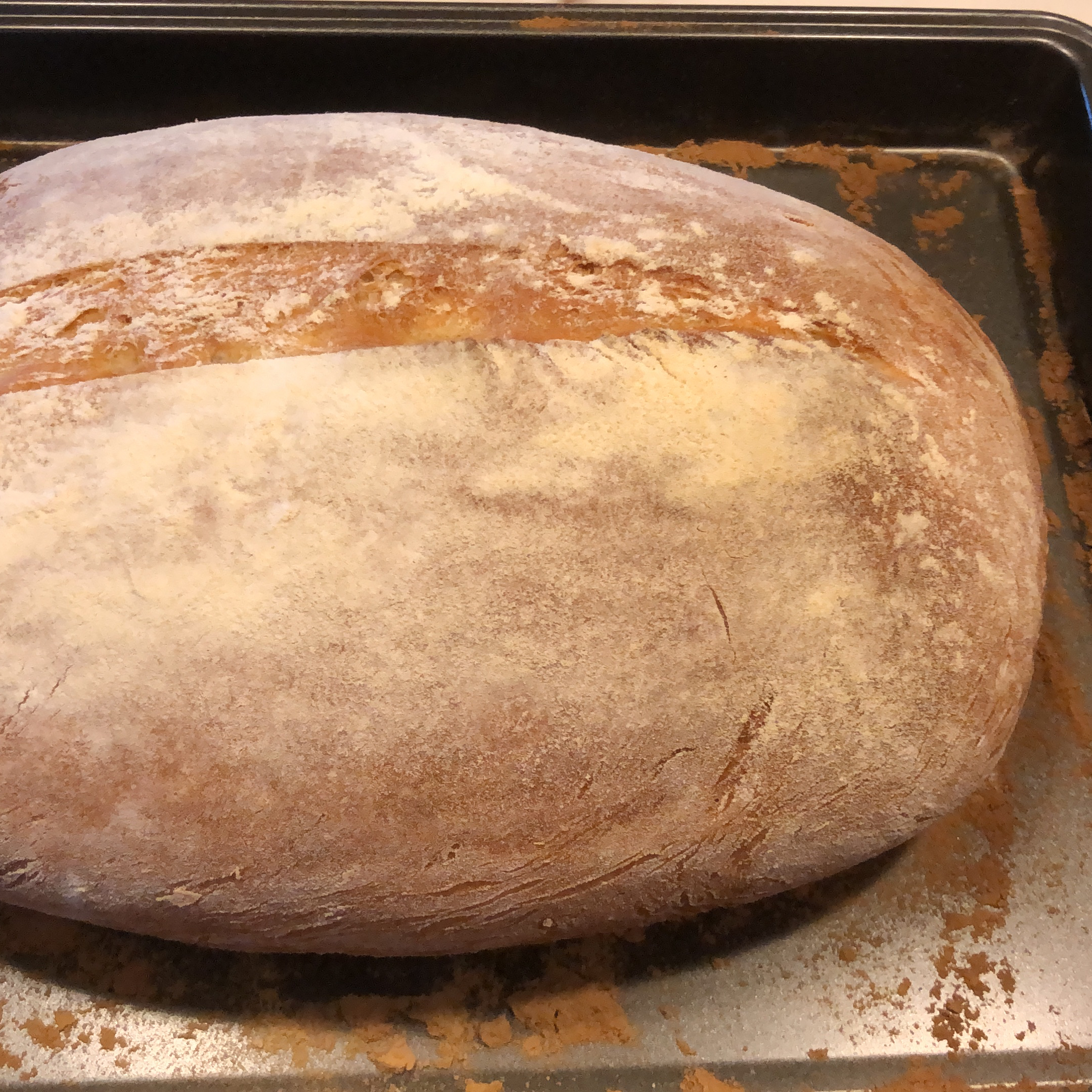 No Knead Beer Bread Rita Tay