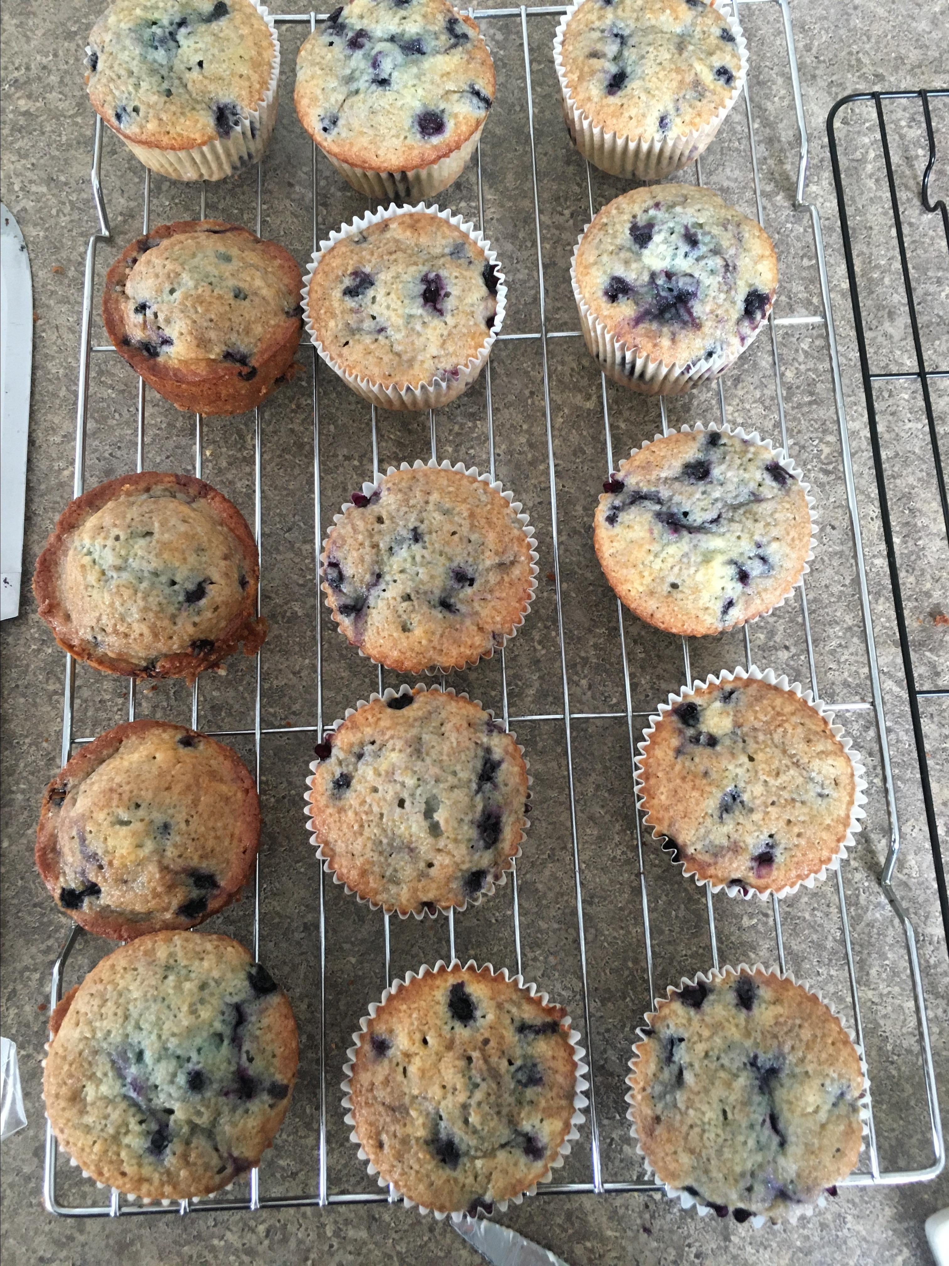 Aunt Blanche's Blueberry Muffins