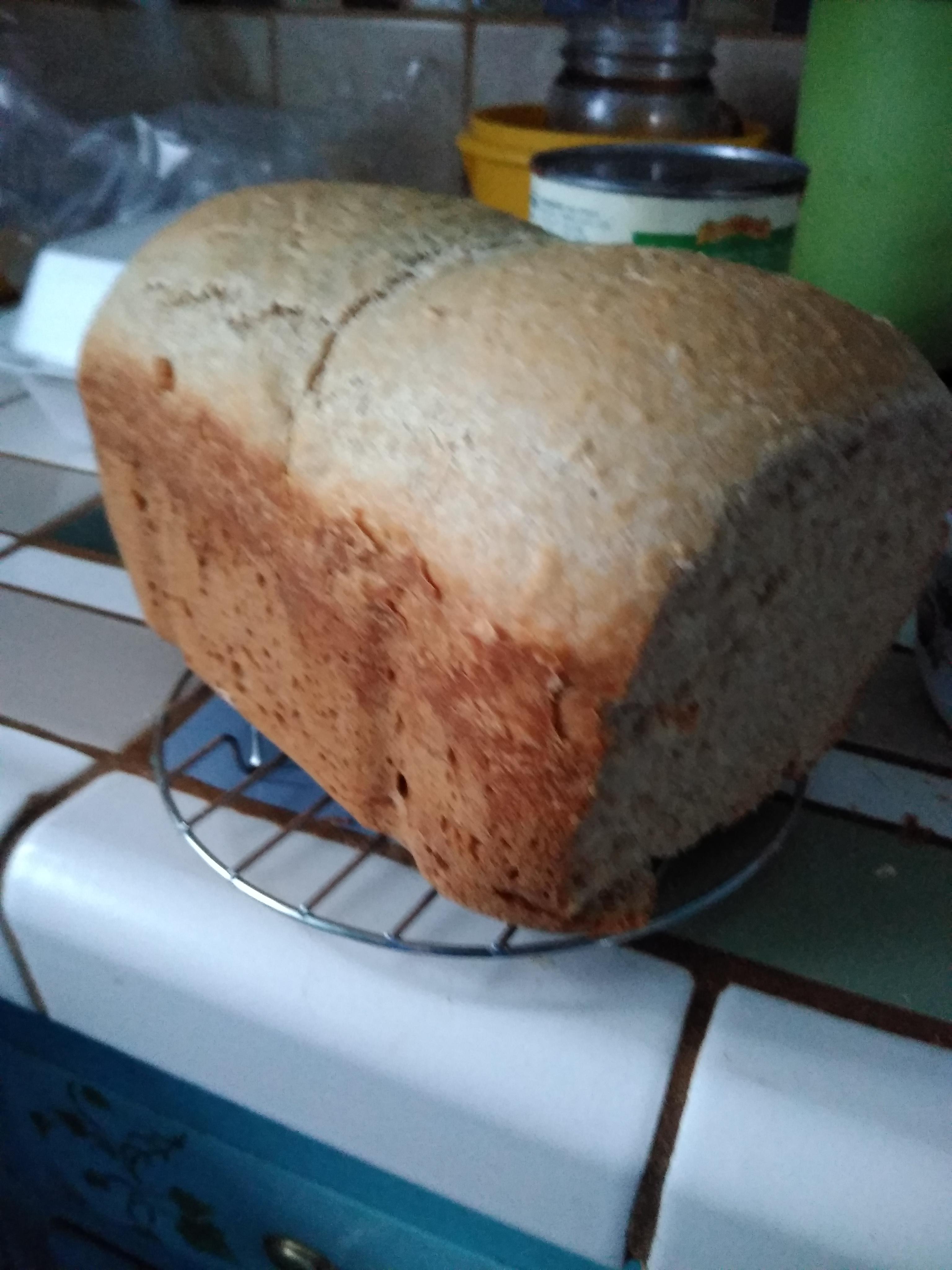 Honey Wheat Oat Flour Bread Machine Bread catscooktoo