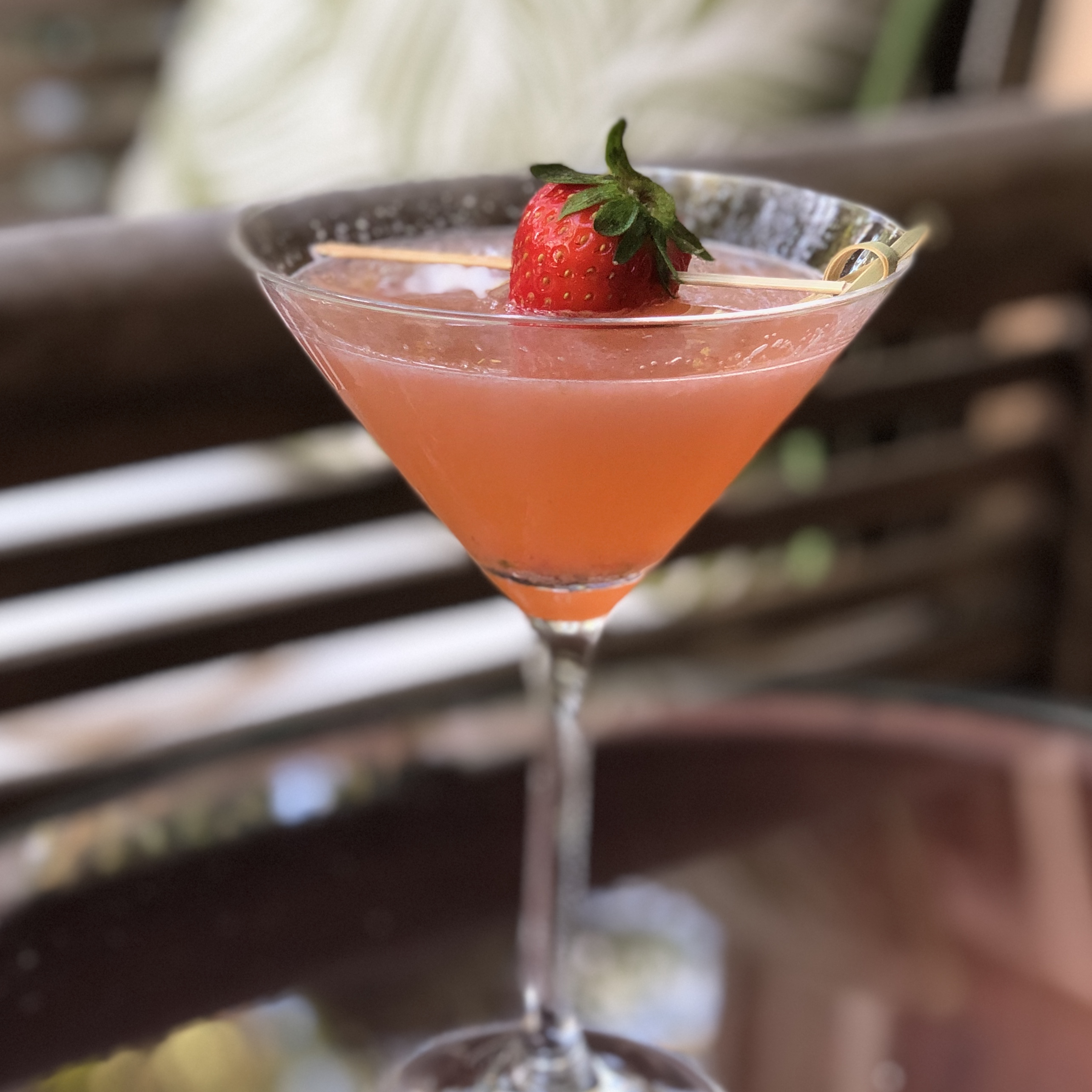 Strawberry-Gin Cocktail sbh2061