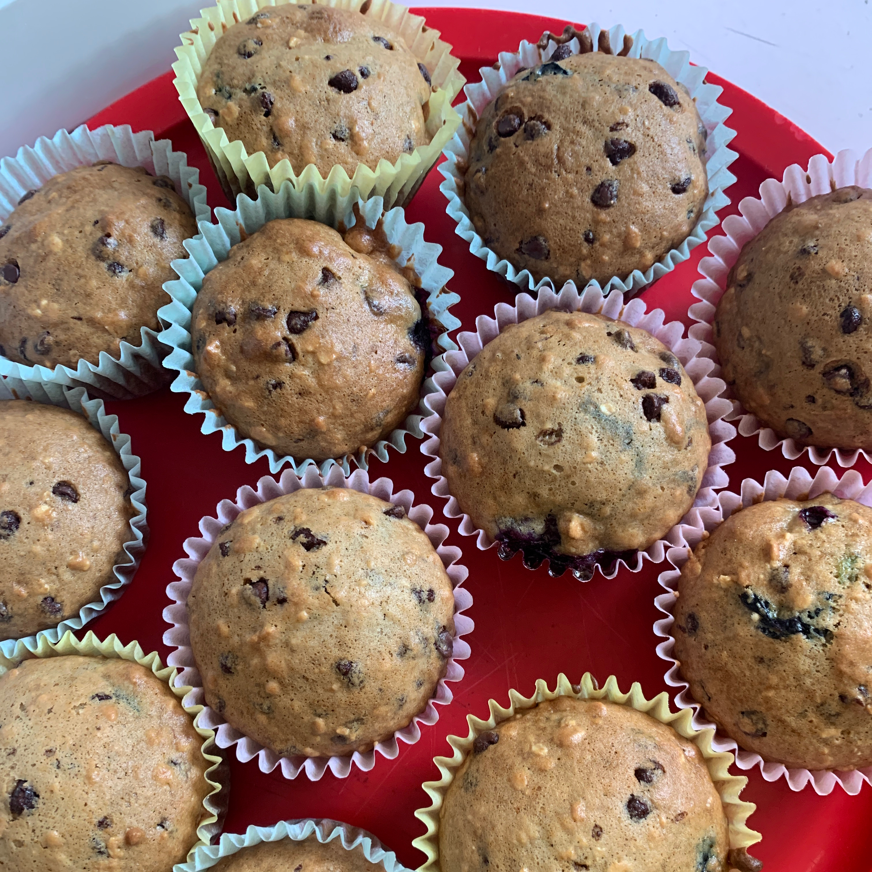 Chocolate Chip and Blueberry Muffins Jocelyn