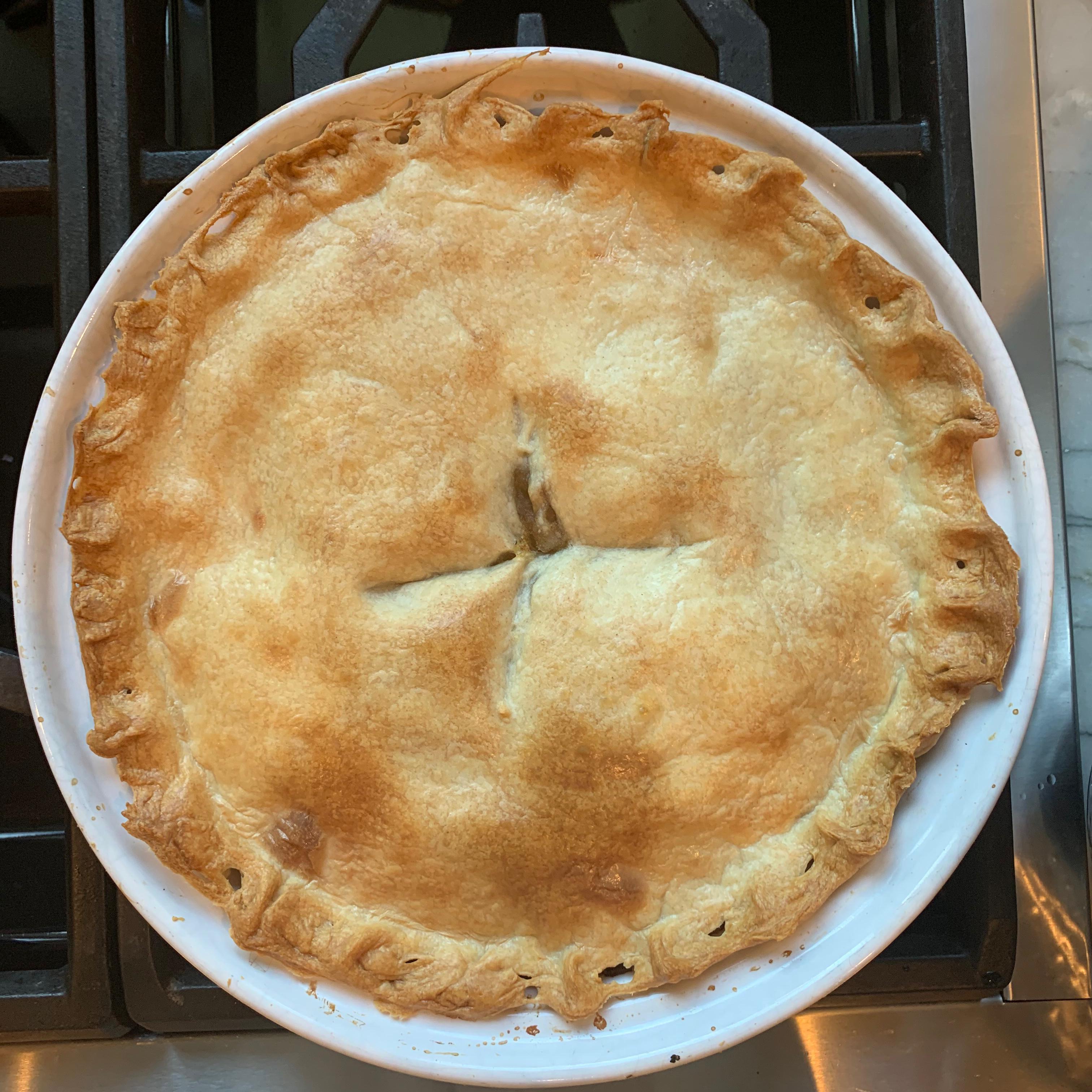 Indian Samosa Pie