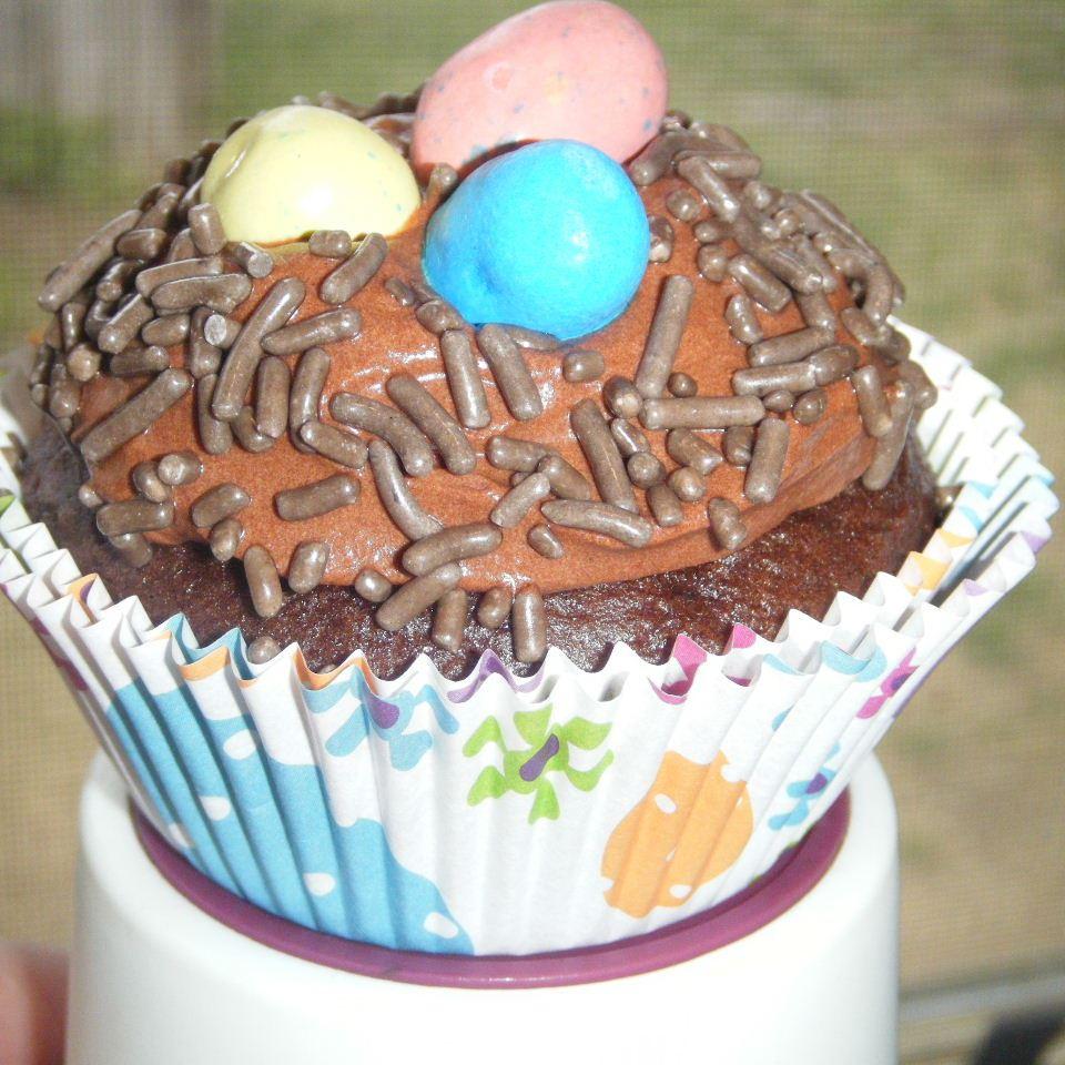 Carlee's Celebrate Spring Cupcakes Kori Lavertue