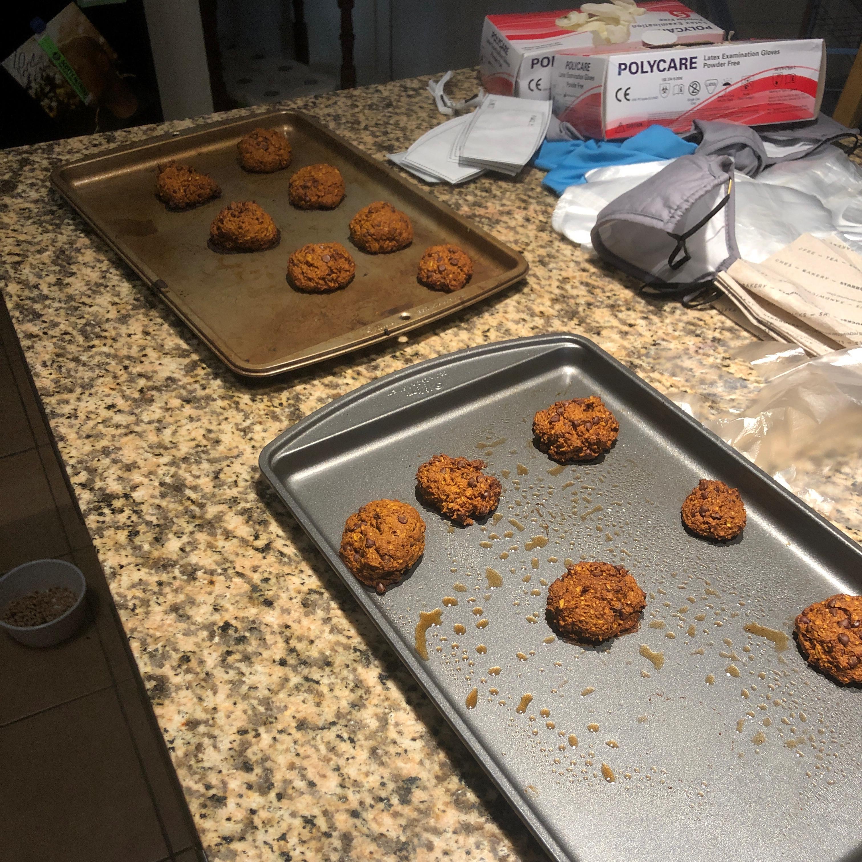 Healthy Vegan Pumpkin Oat Chocolate Chip Cookies Winston 1990