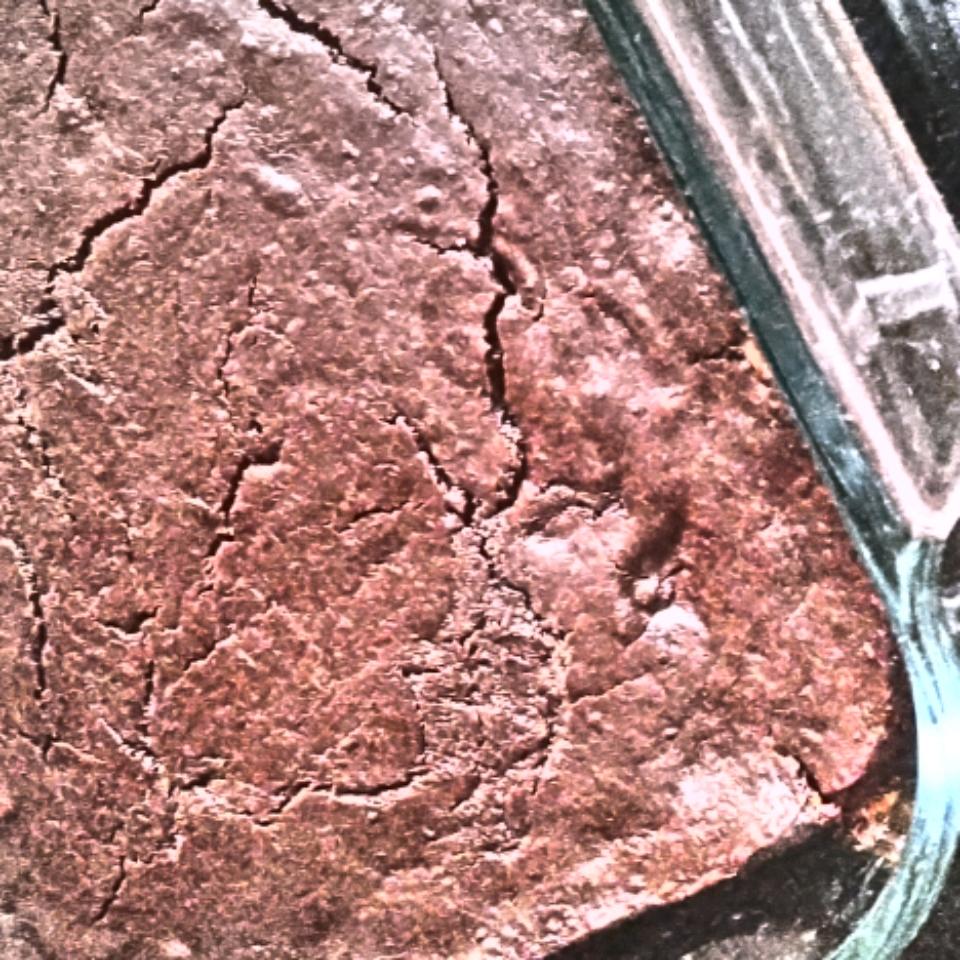 Flourless Brownies Stoofie