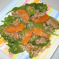 Orange Vinaigrette Brown Rice Salad polly625