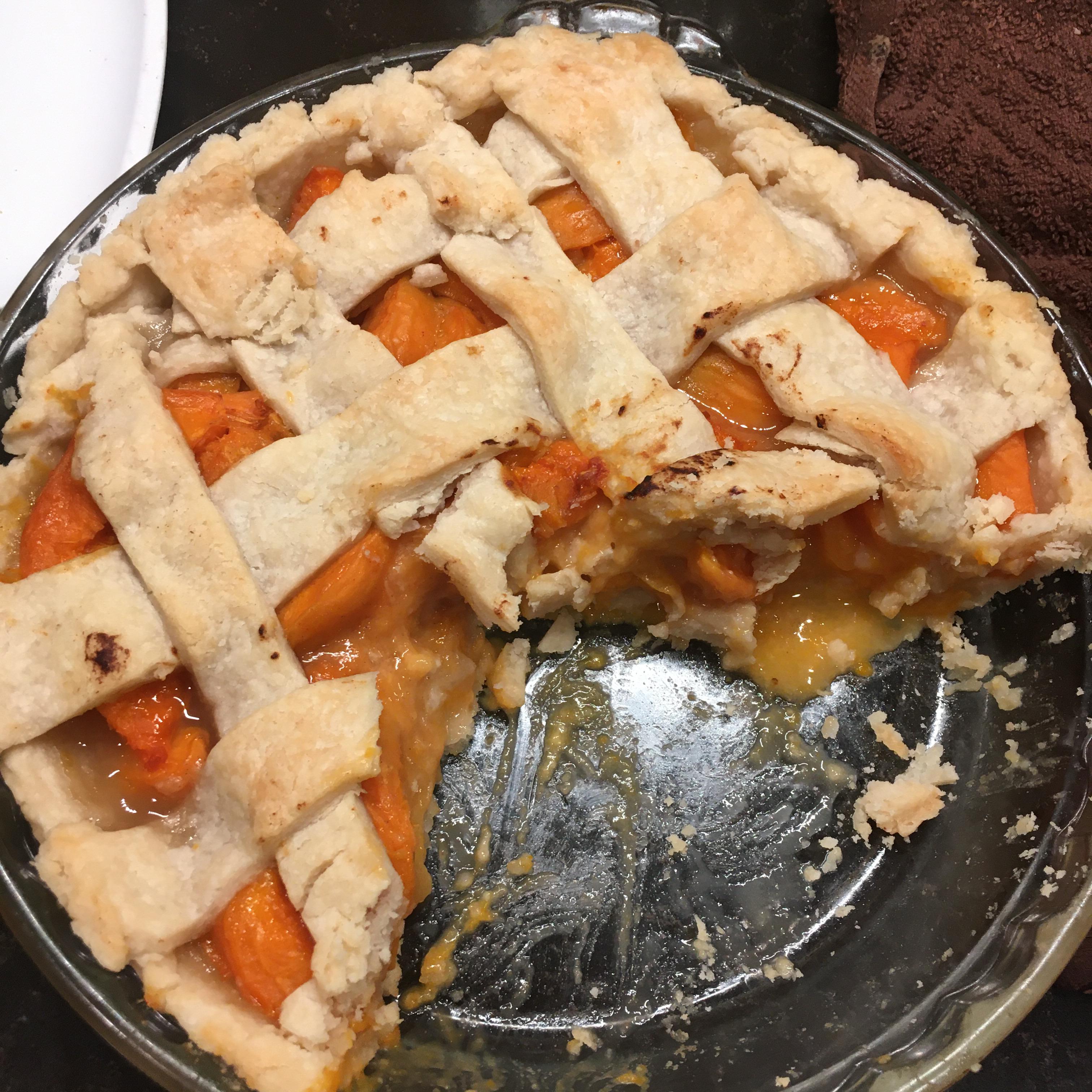 Apricot Pie Paleosue