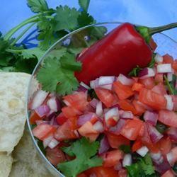 Ex-Girlfriend's Mom's Salsa Fresca (Pico de Gallo) Marianne