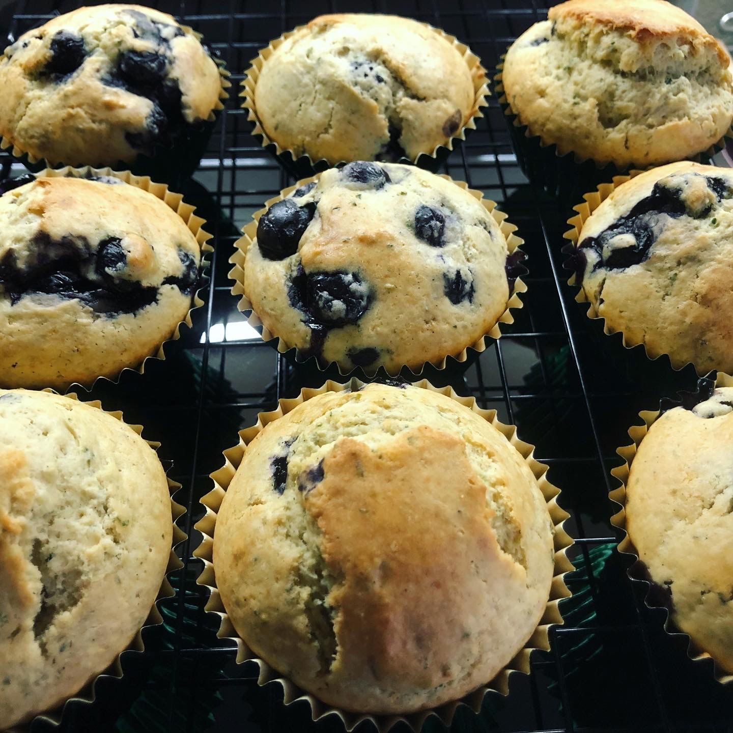 Lemon Verbena-Blueberry Muffins joh