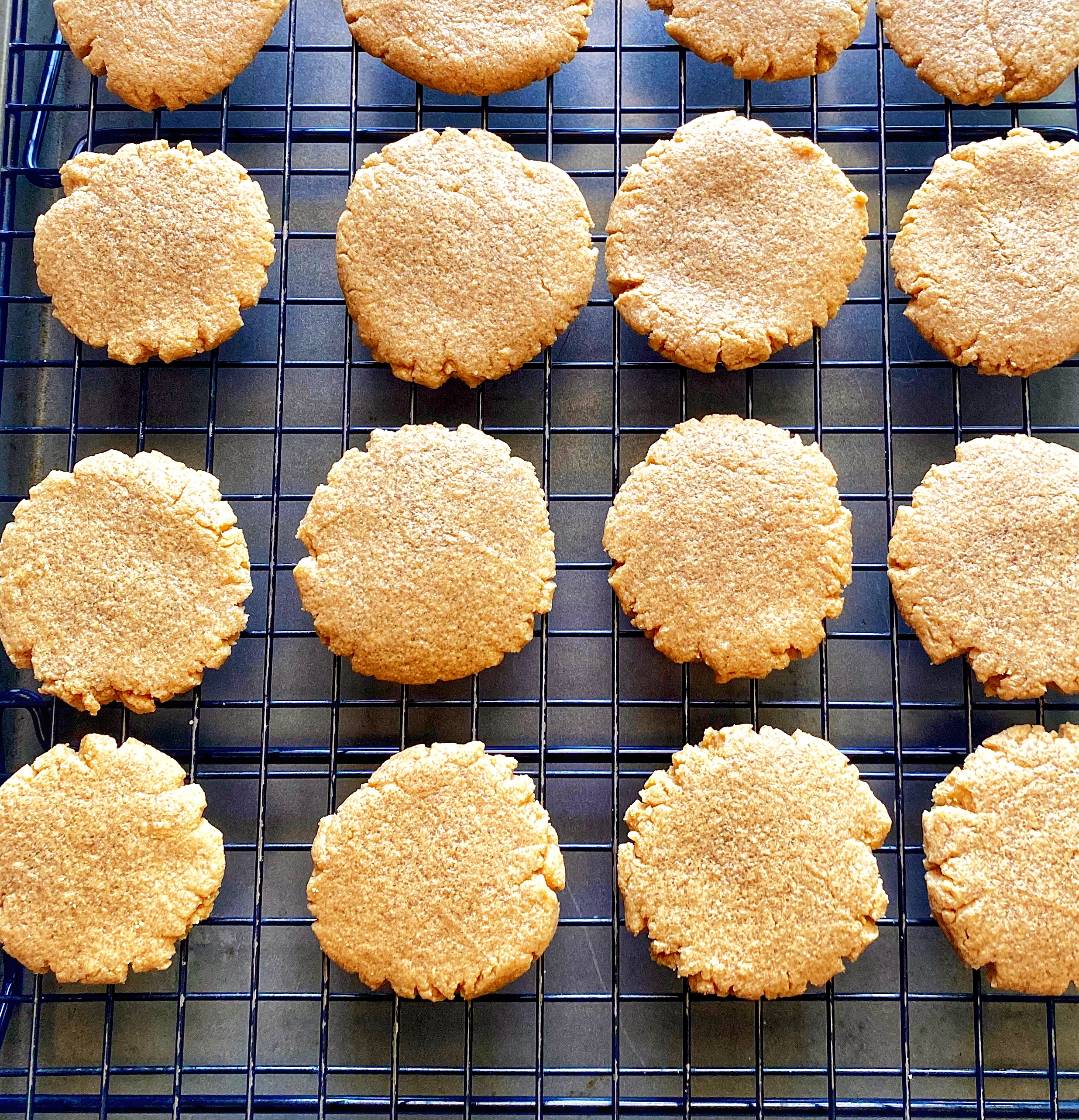 Protein-Packed Peanut Butter Cookies