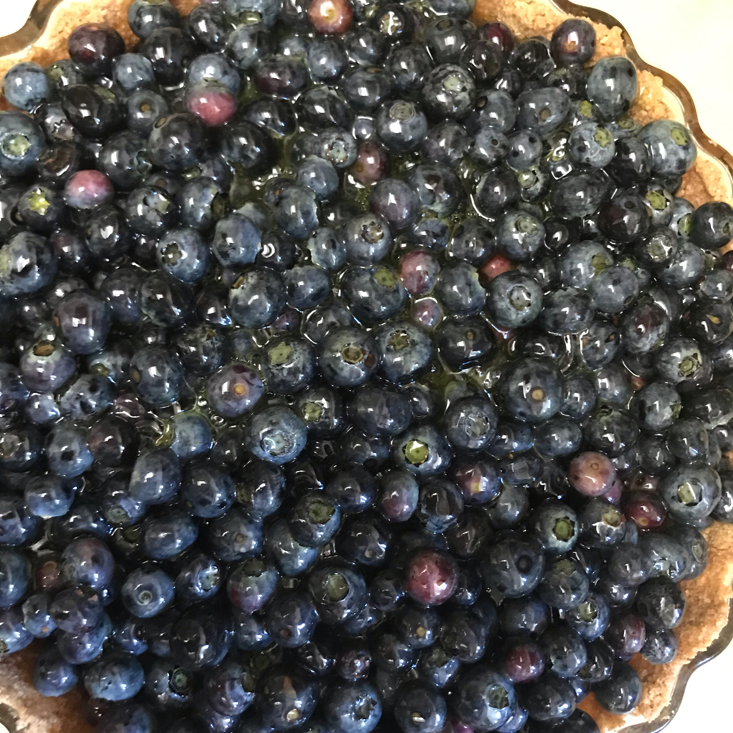 Jan's Fresh Blueberry Pie Mary Ann Sexton