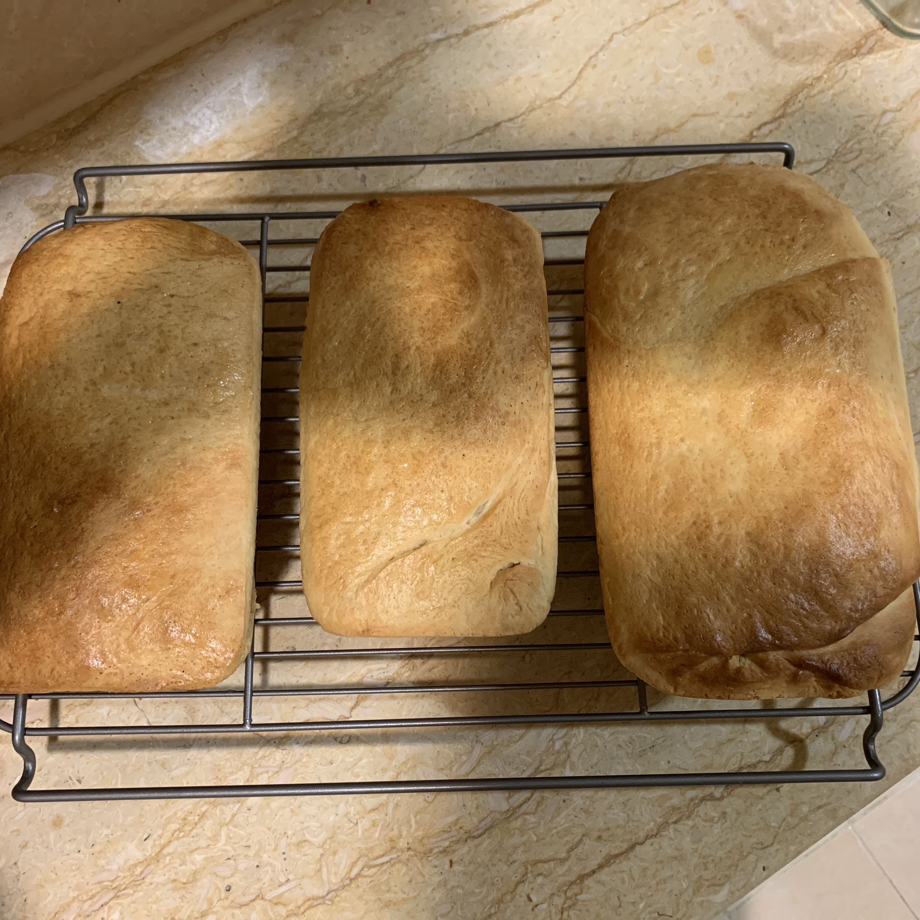 Simple White Bread BBB