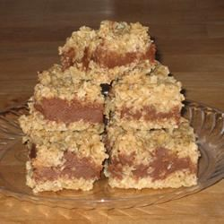 No Bake Chocolate Oat Bars FROGHOPPER