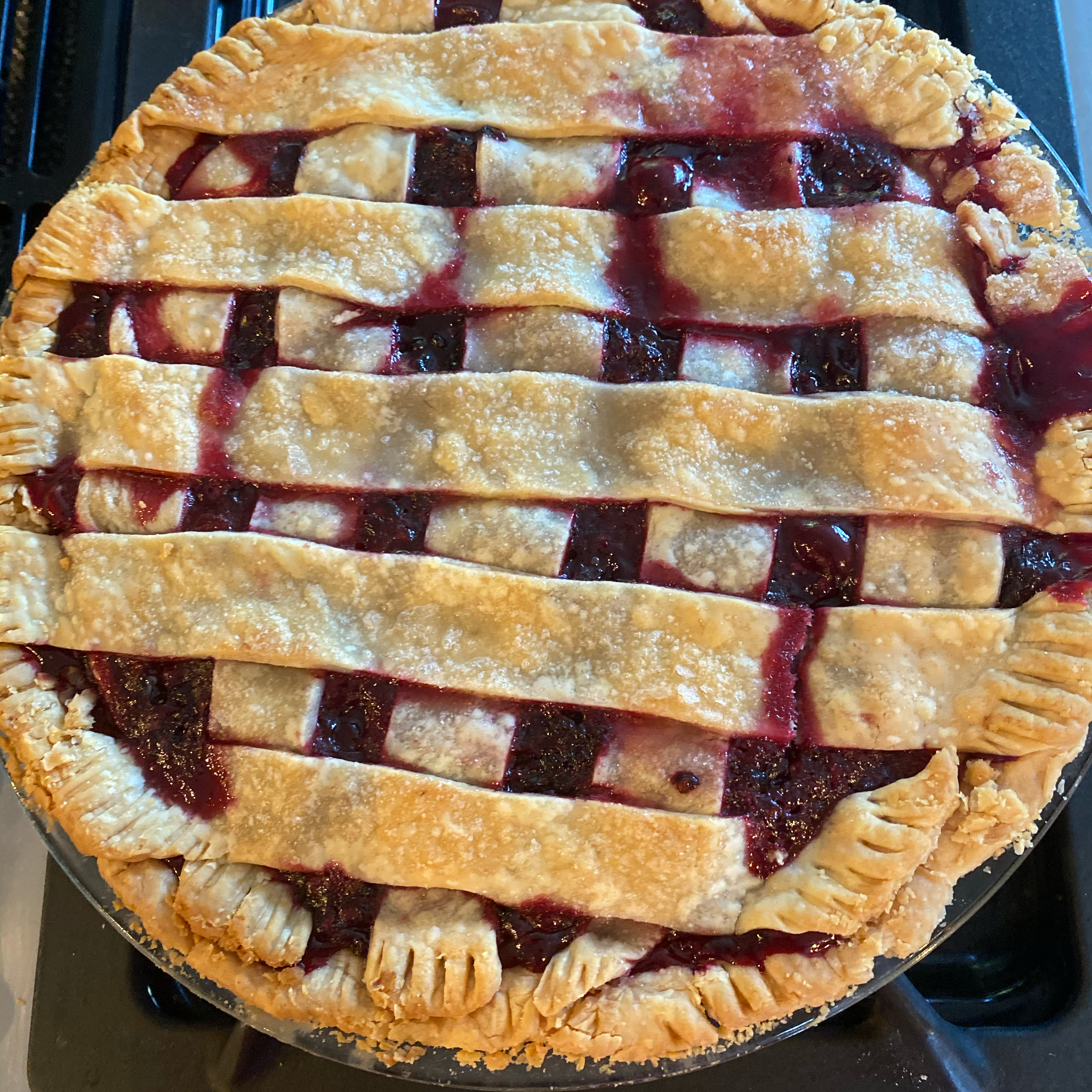 Northwest Marionberry Pie Amyj70